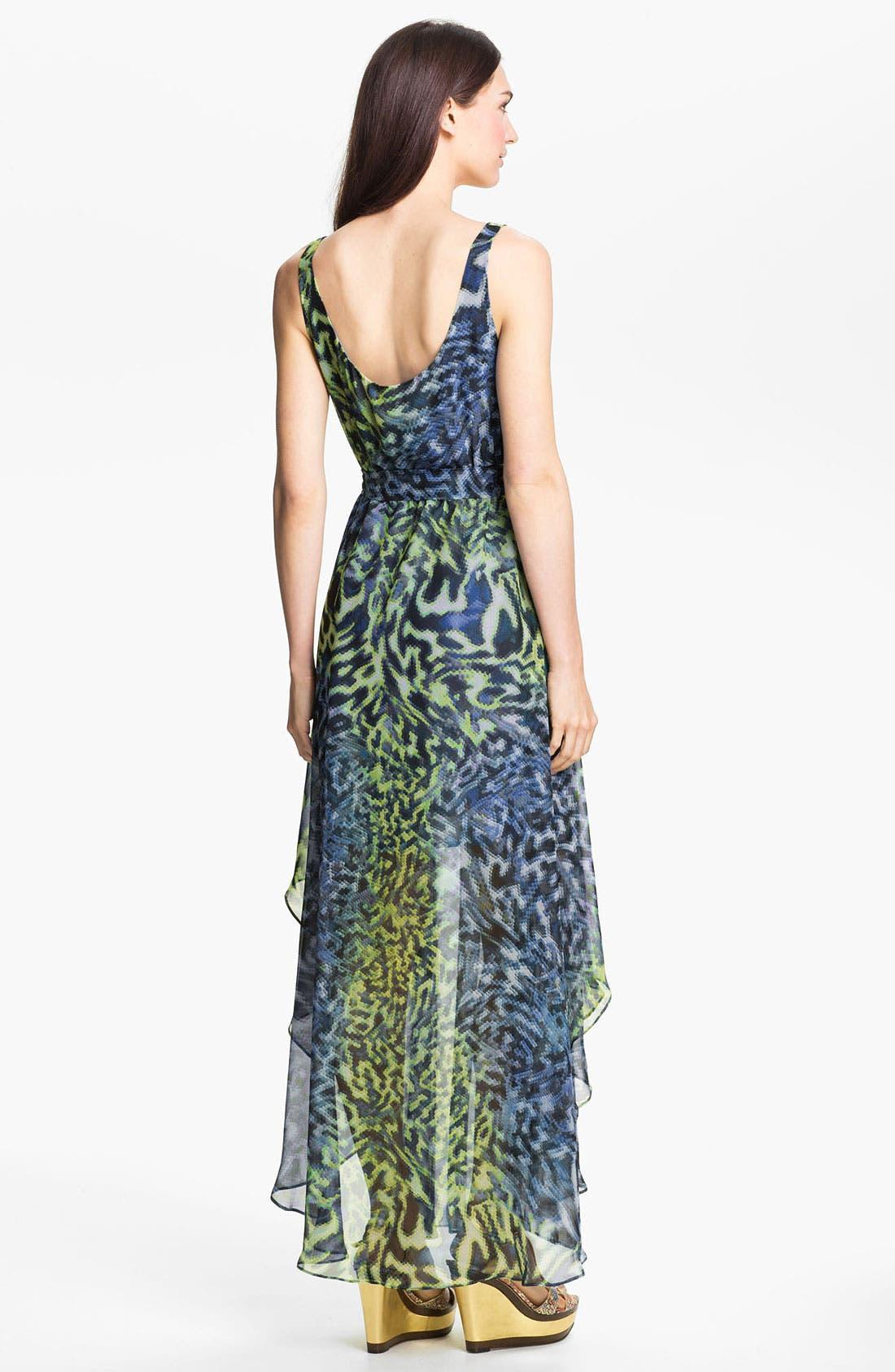 Alternate Image 2  - Suzi Chin for Maggy Boutique Print Chiffon Maxi Dress
