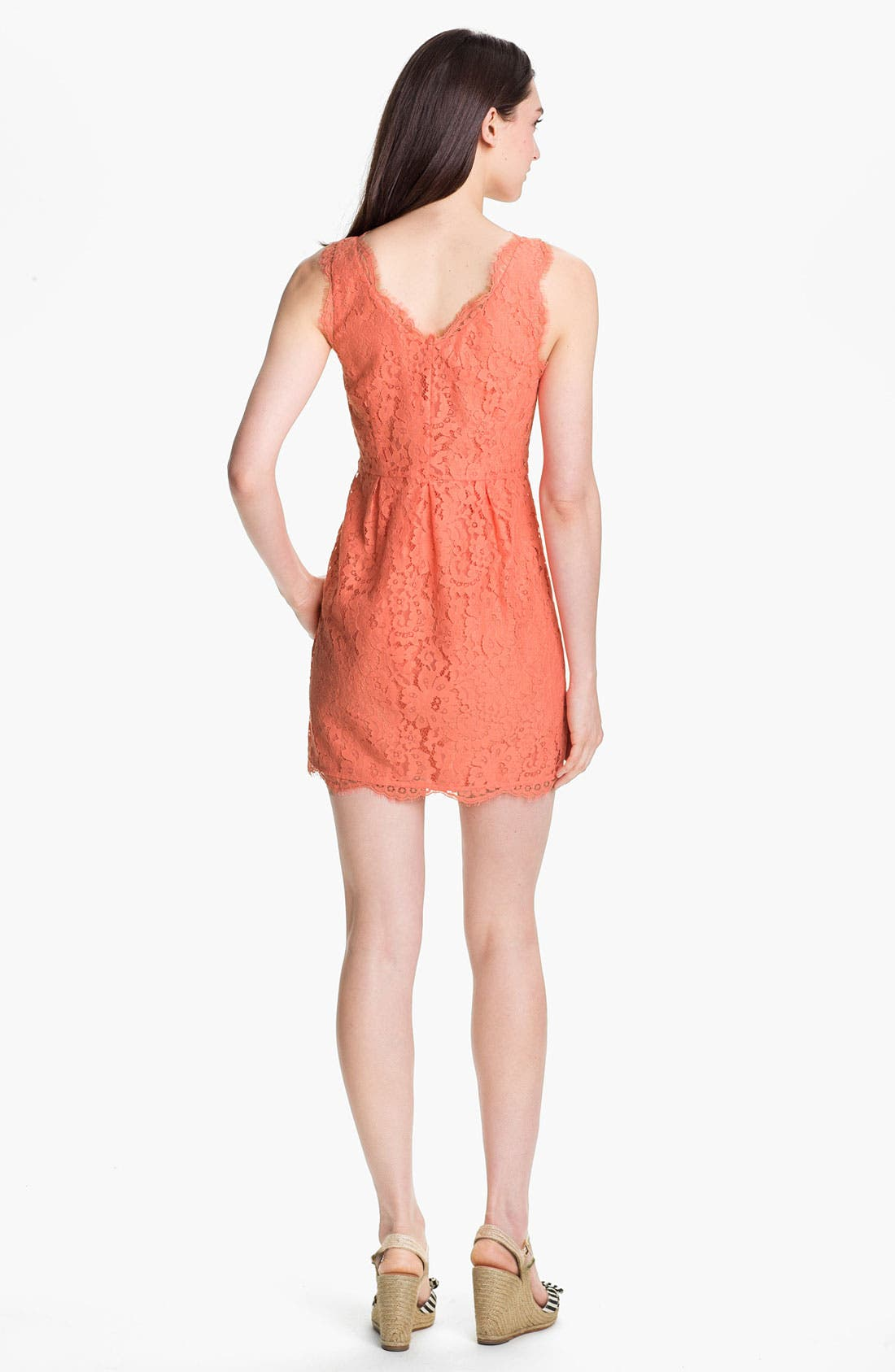 Alternate Image 2  - Joie 'Rori' Sleeveless Lace Minidress