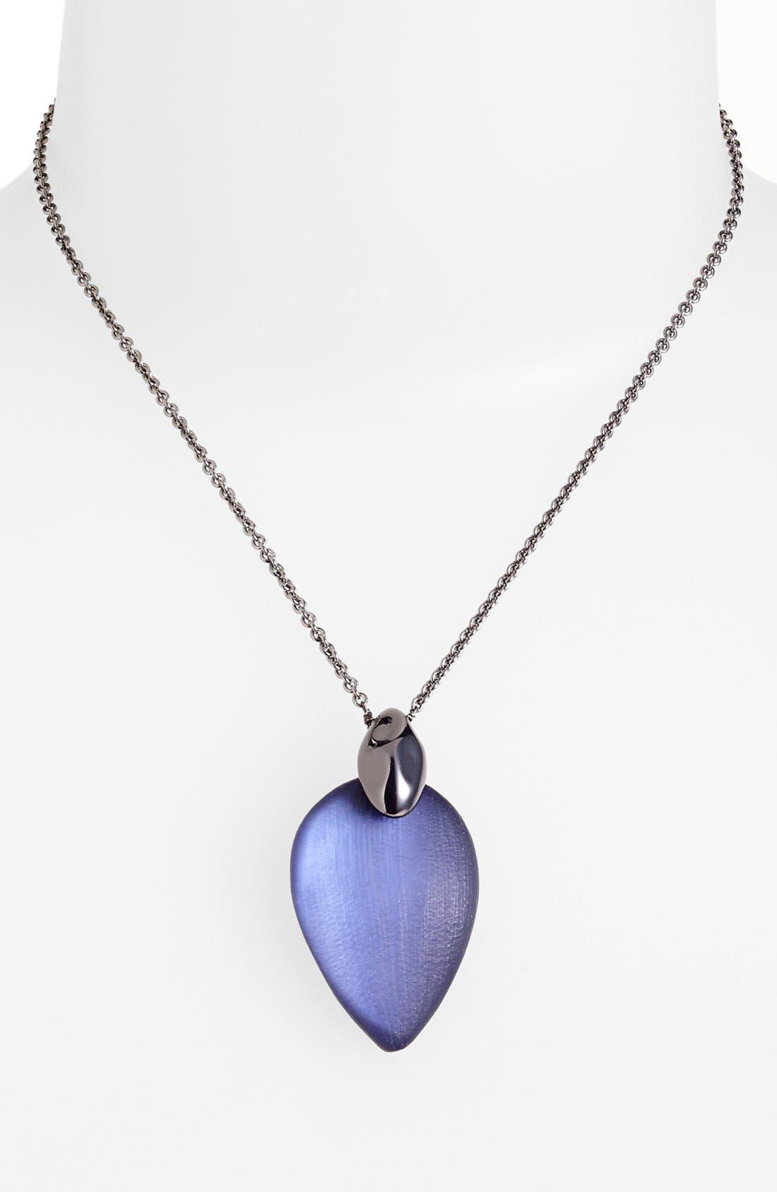 Alternate Image 1 Selected - Alexis Bittar 'Lucite® - Neo Bohemian' Pendant Necklace