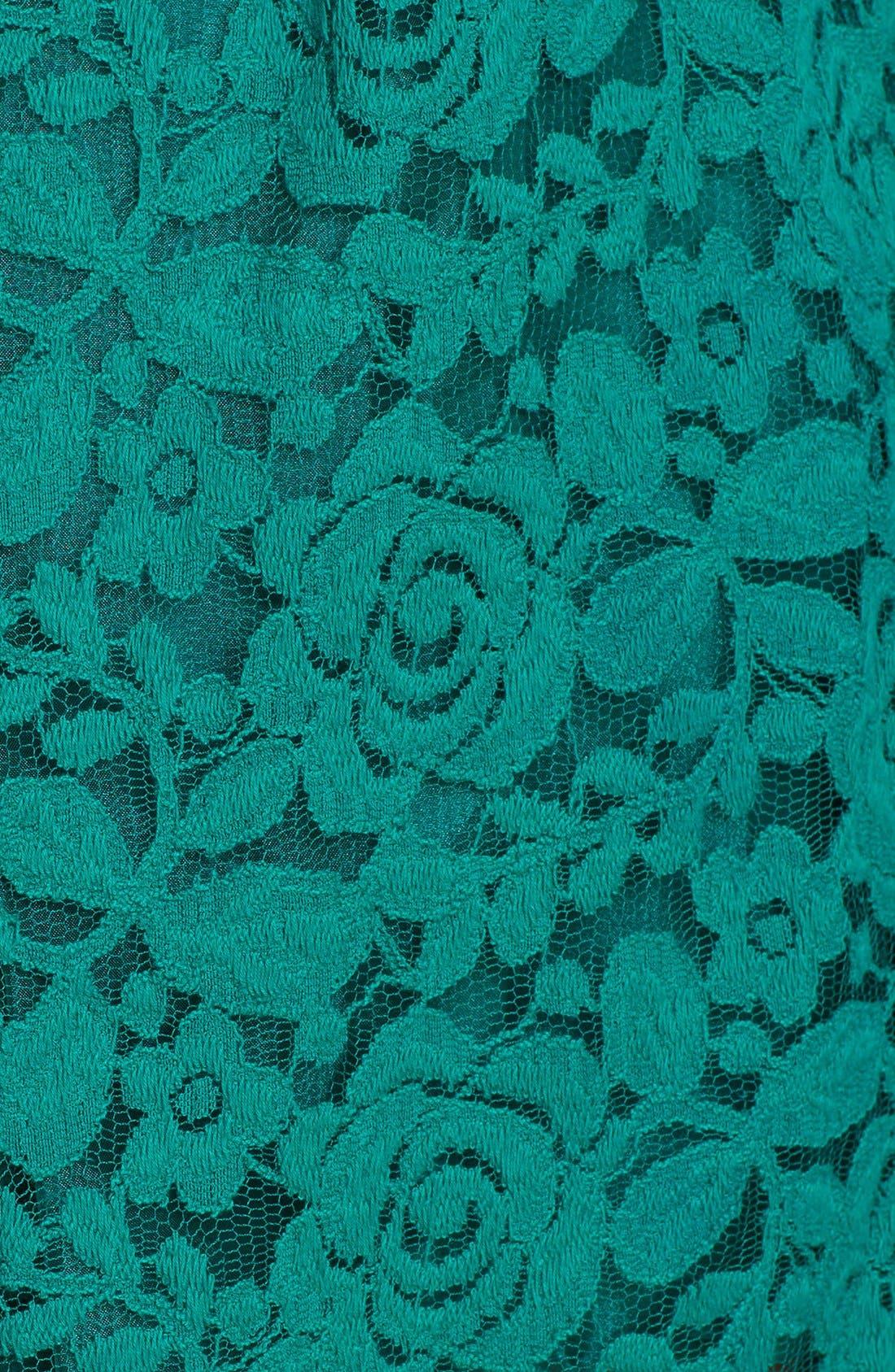 Alternate Image 3  - Taylor Dresses Lace Fit & Flare Dress