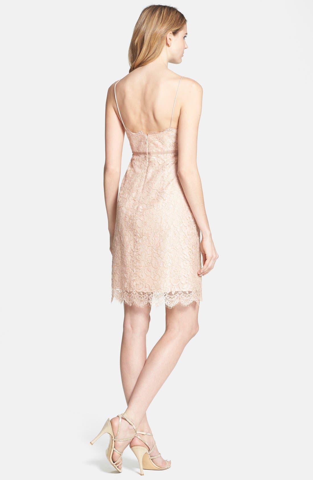 Alternate Image 2  - Jenny Yoo 'Cosette' Lace Dress