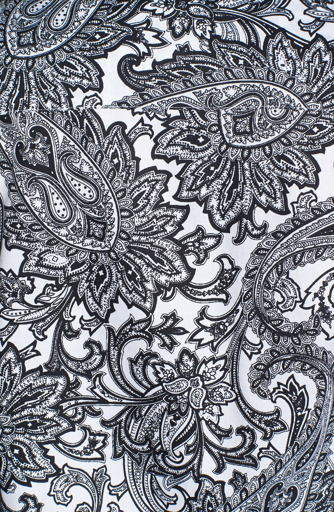 Alternate Image 3  - Foxcroft 'Santorini' Paisley Print Wrinkle Free Cotton Shirt (Plus Size)