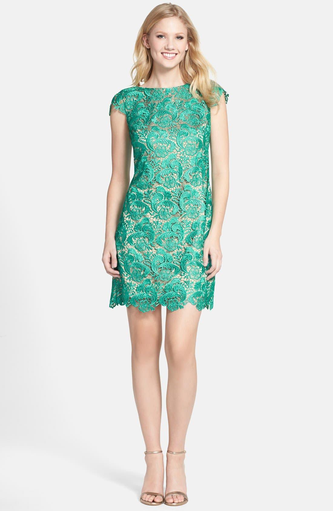 Alternate Image 3  - Eliza J Lace Fit & Flare Dress