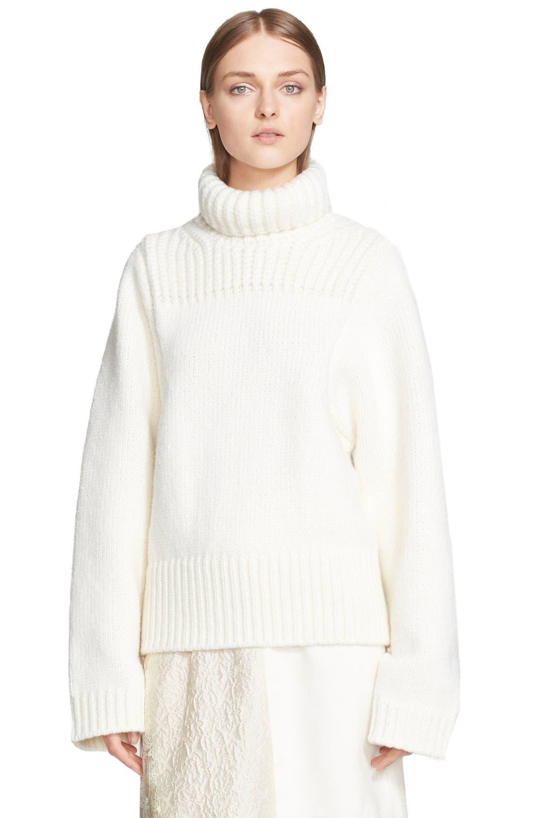 Alternate Image 1 Selected - Stella McCartney Fisherman Turtleneck Sweater