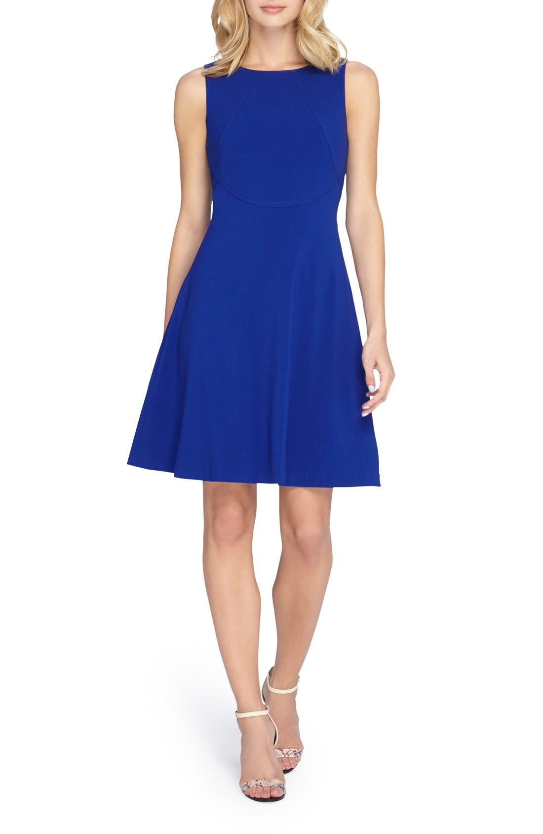 Tahari Sleeveless A-Line Dress (Petite)
