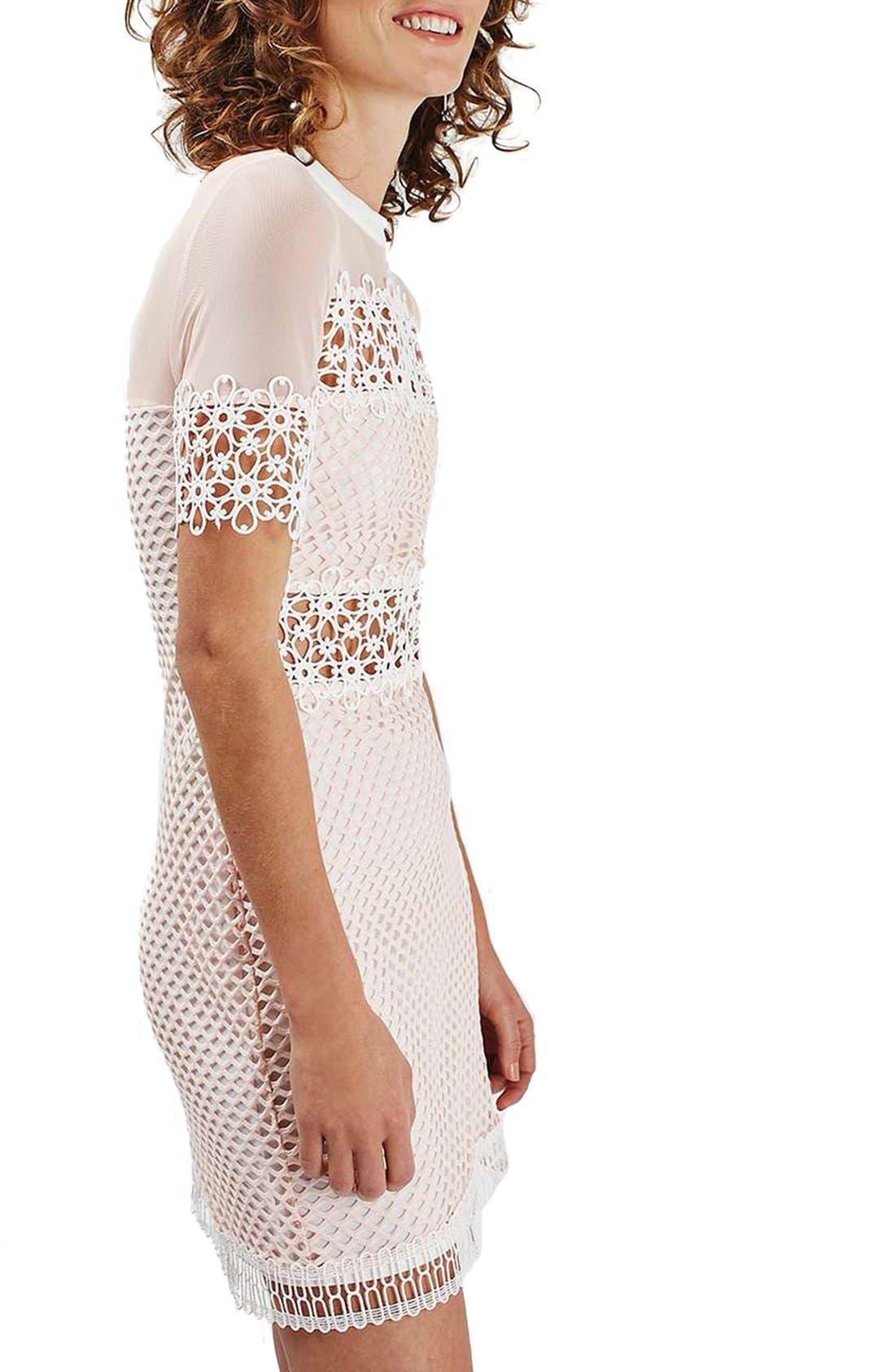 Alternate Image 3  - Topshop Mesh & Lace A-Line Dress