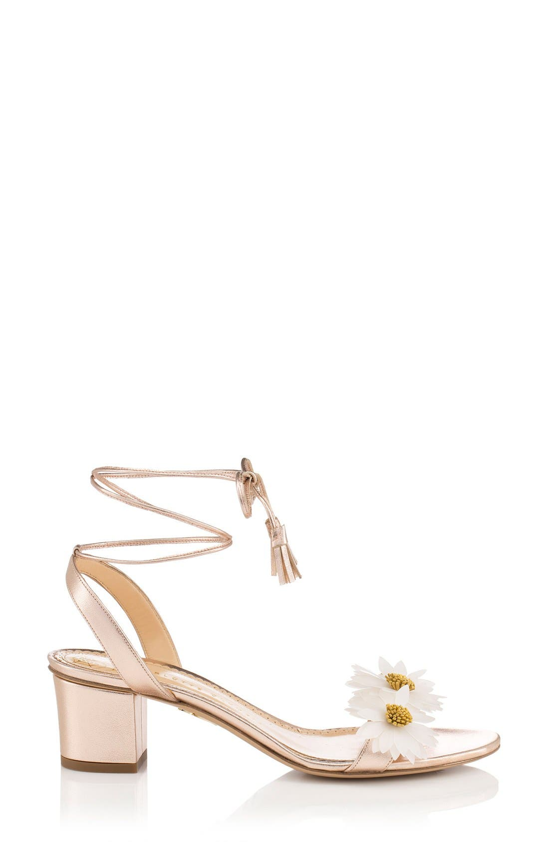 Alternate Image 1 Selected - Charlotte Olympia Tara Lace-Up Sandal (Women)