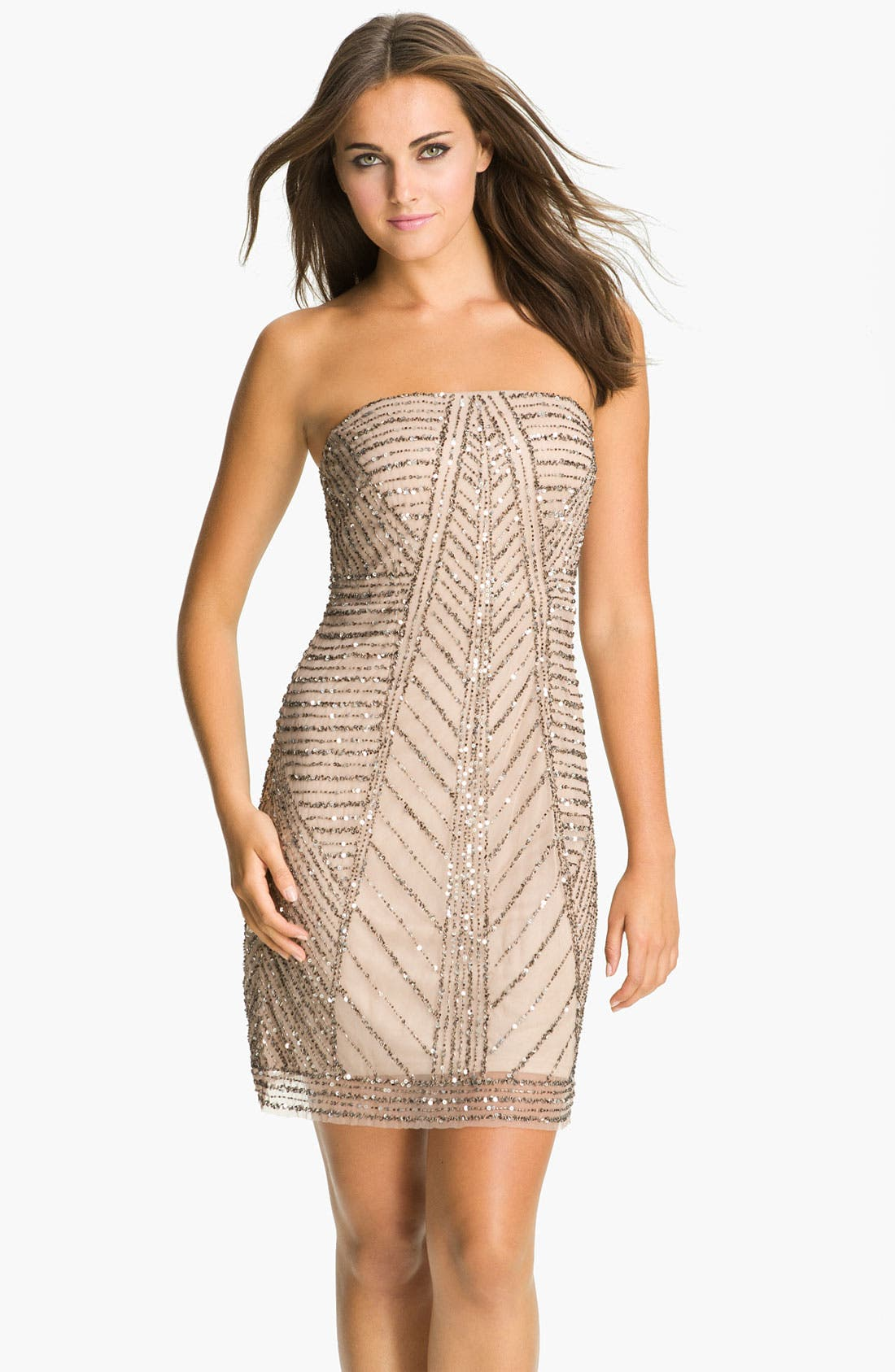 Alternate Image 1 Selected - Adrianna Papell Strapless Embellished Mesh Dress
