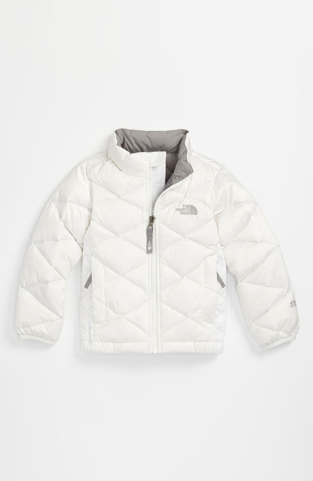 Alternate Image 1 Selected - The North Face 'Aconcagua' Jacket (Toddler)