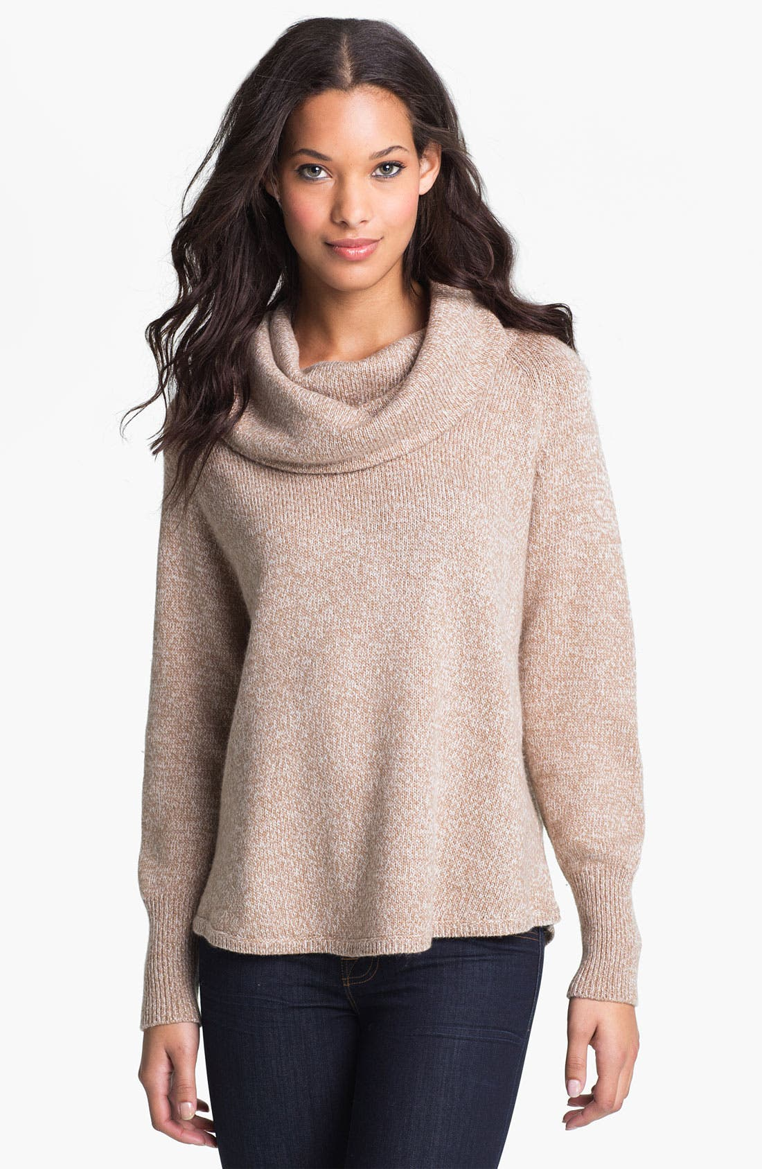 Alternate Image 1 Selected - Joie 'Wesley' Cowl Neck Sweater