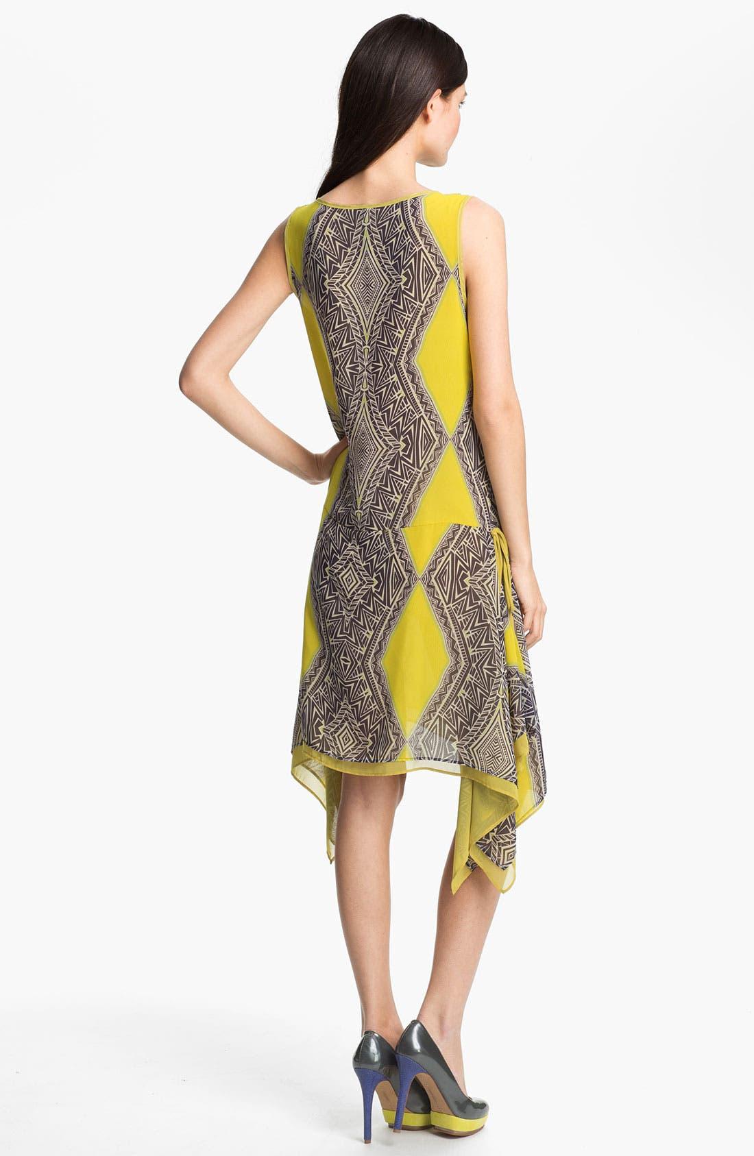 Alternate Image 2  - Kay Celine Print Drop Waist Dress