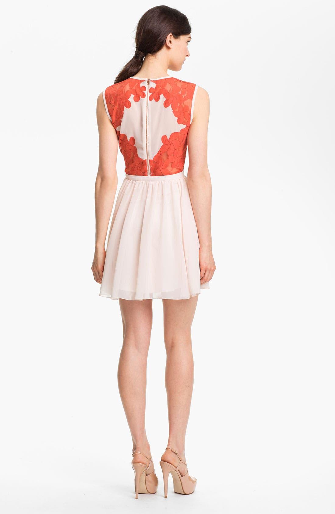 Alternate Image 2  - Ted Baker London Mixed Media Fit & Flare Dress