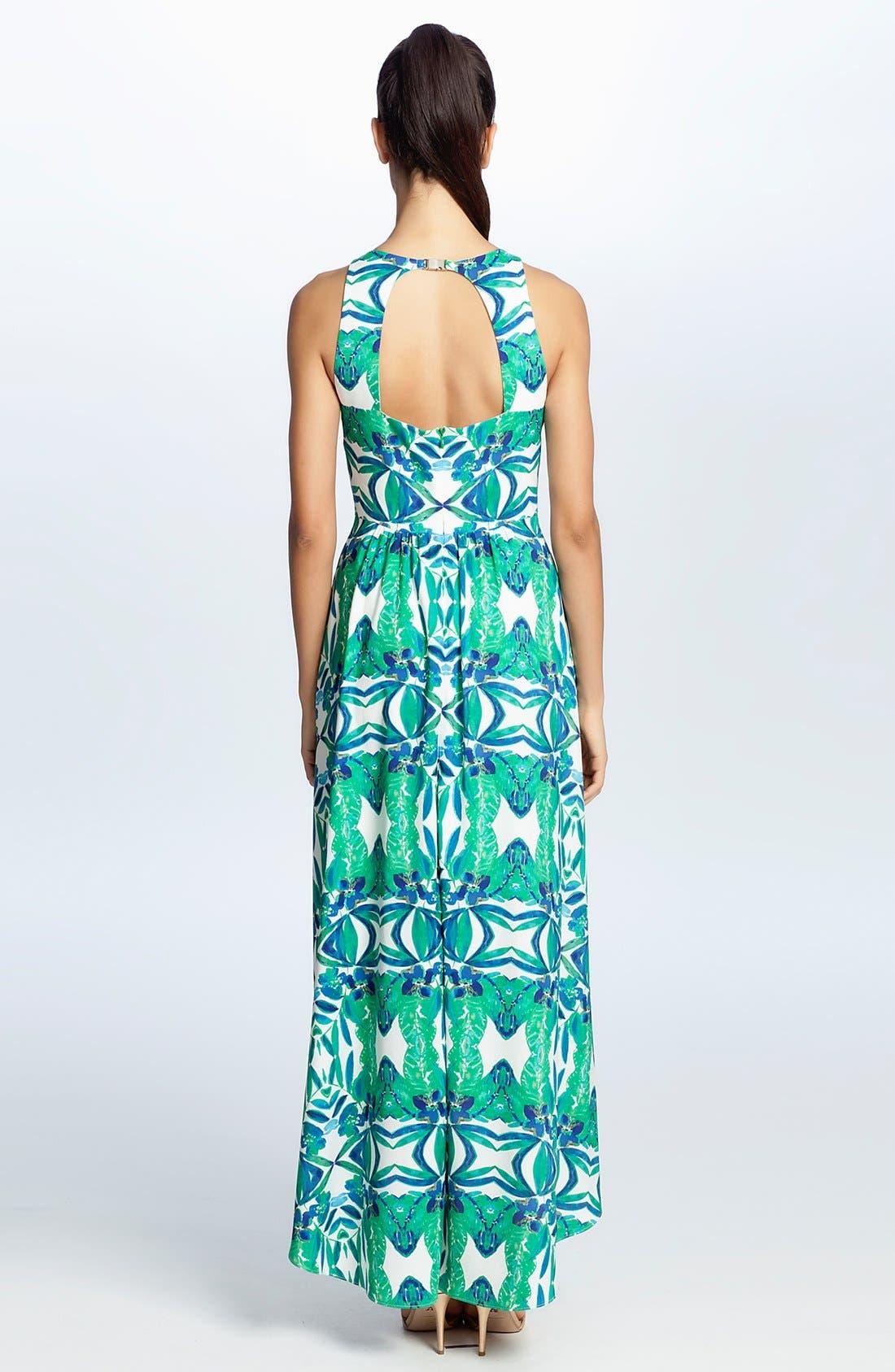 Alternate Image 2  - Cynthia Steffe 'Sydney' Print Maxi Dress