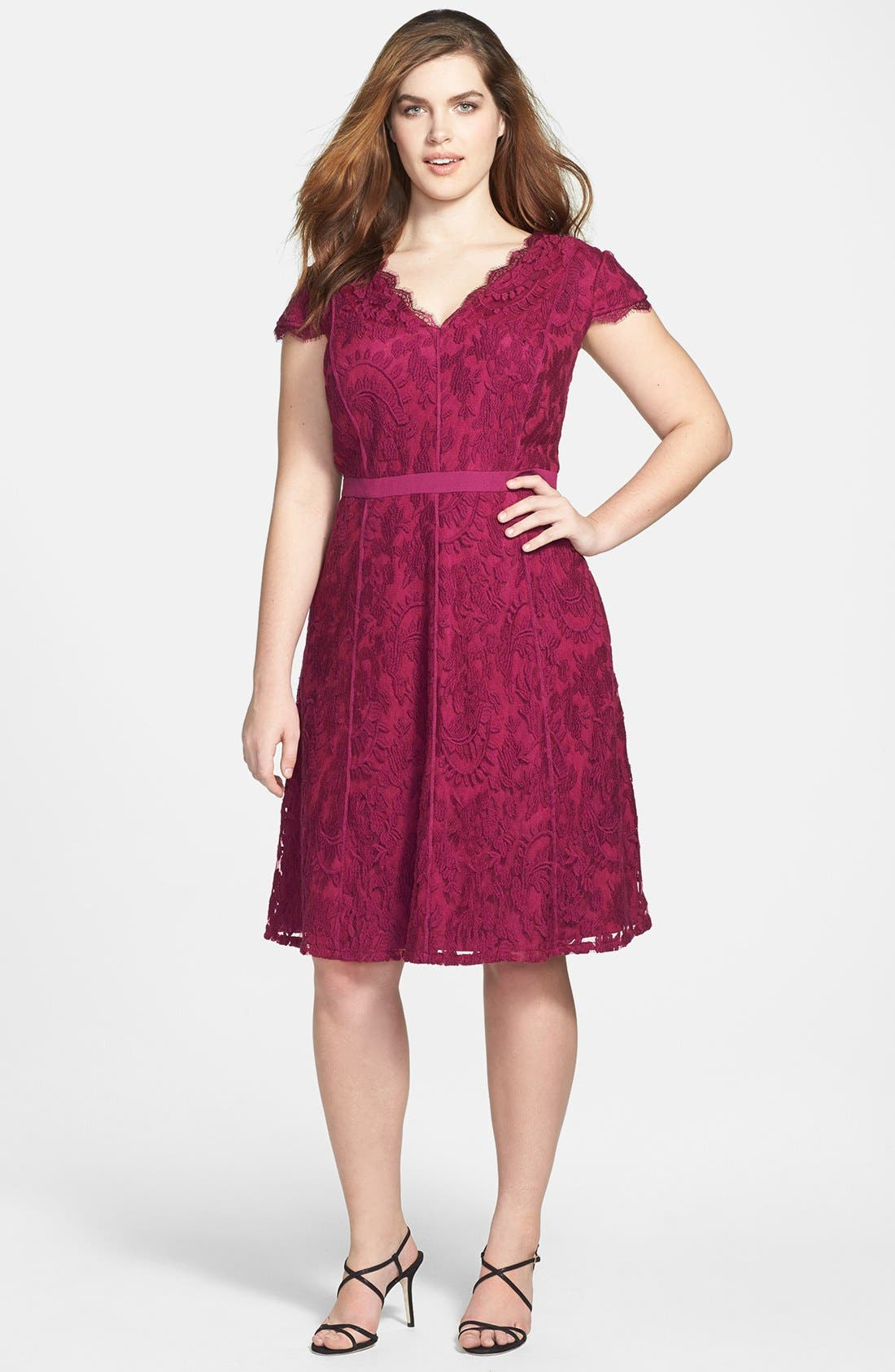 Main Image - Adrianna Papell Cap Sleeve Lace Fit & Flare Dress (Plus Size)