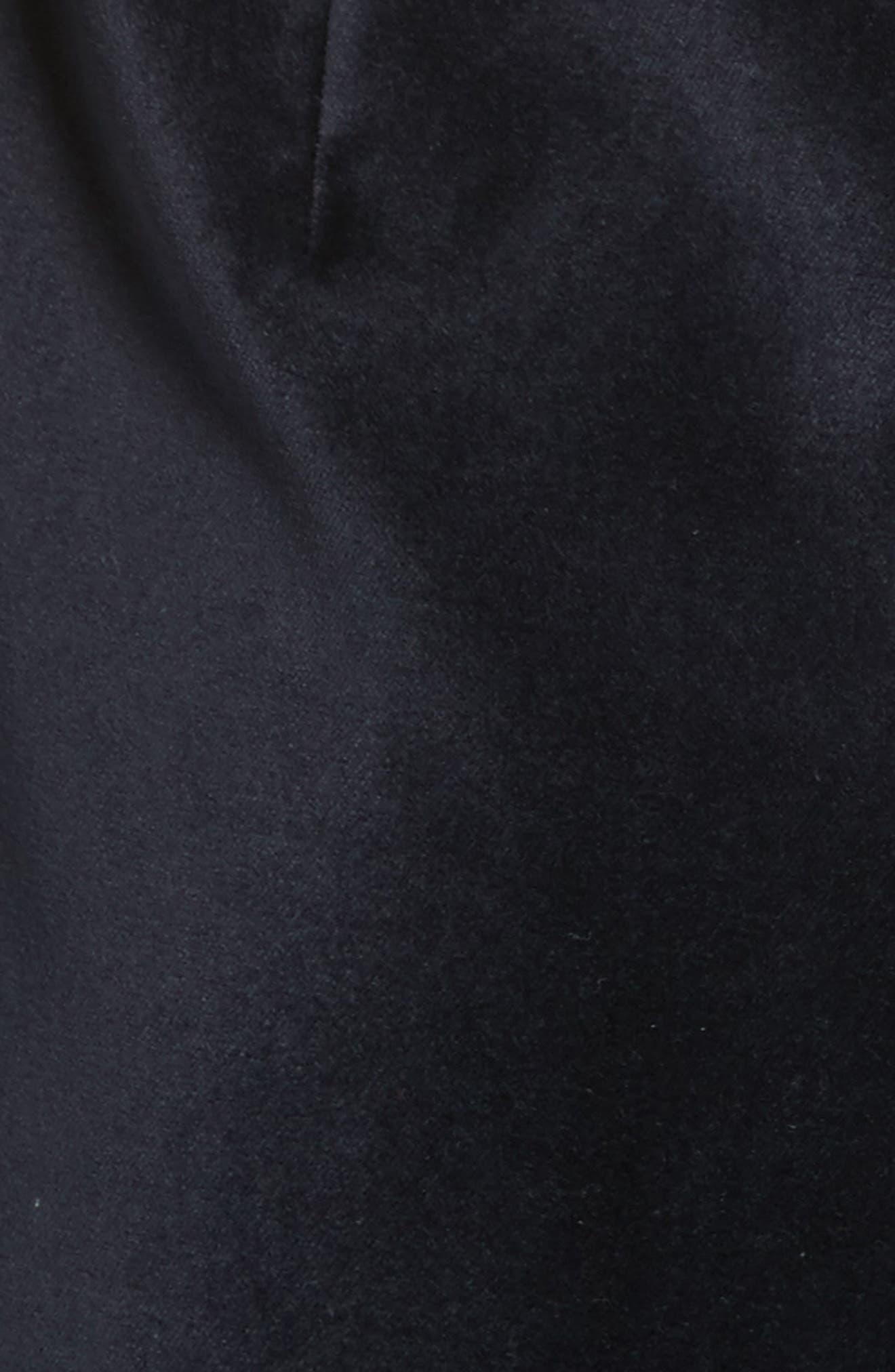 Alternate Image 5  - Ted Baker London Cheryll Embellished Collar Velvet Dress
