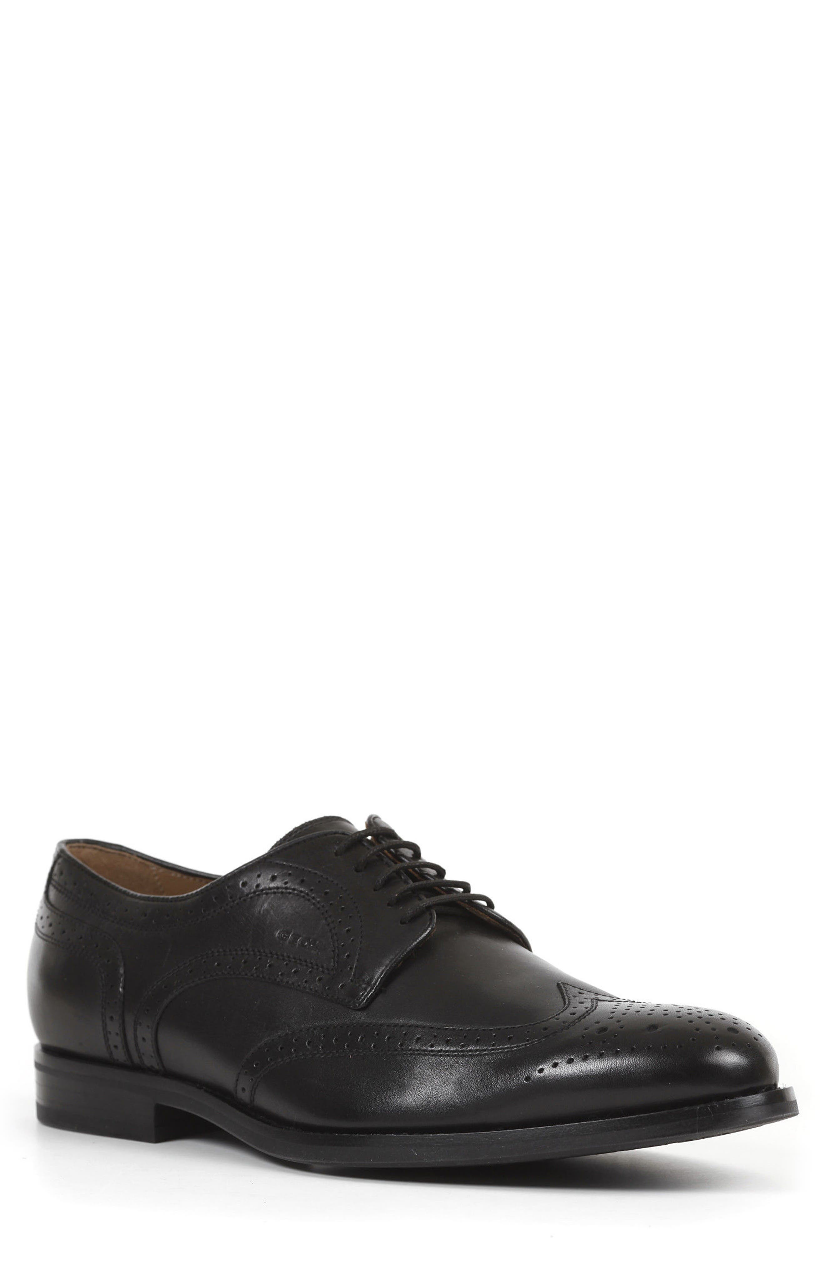 Geox Hampstead 5 Wingtip (Men)