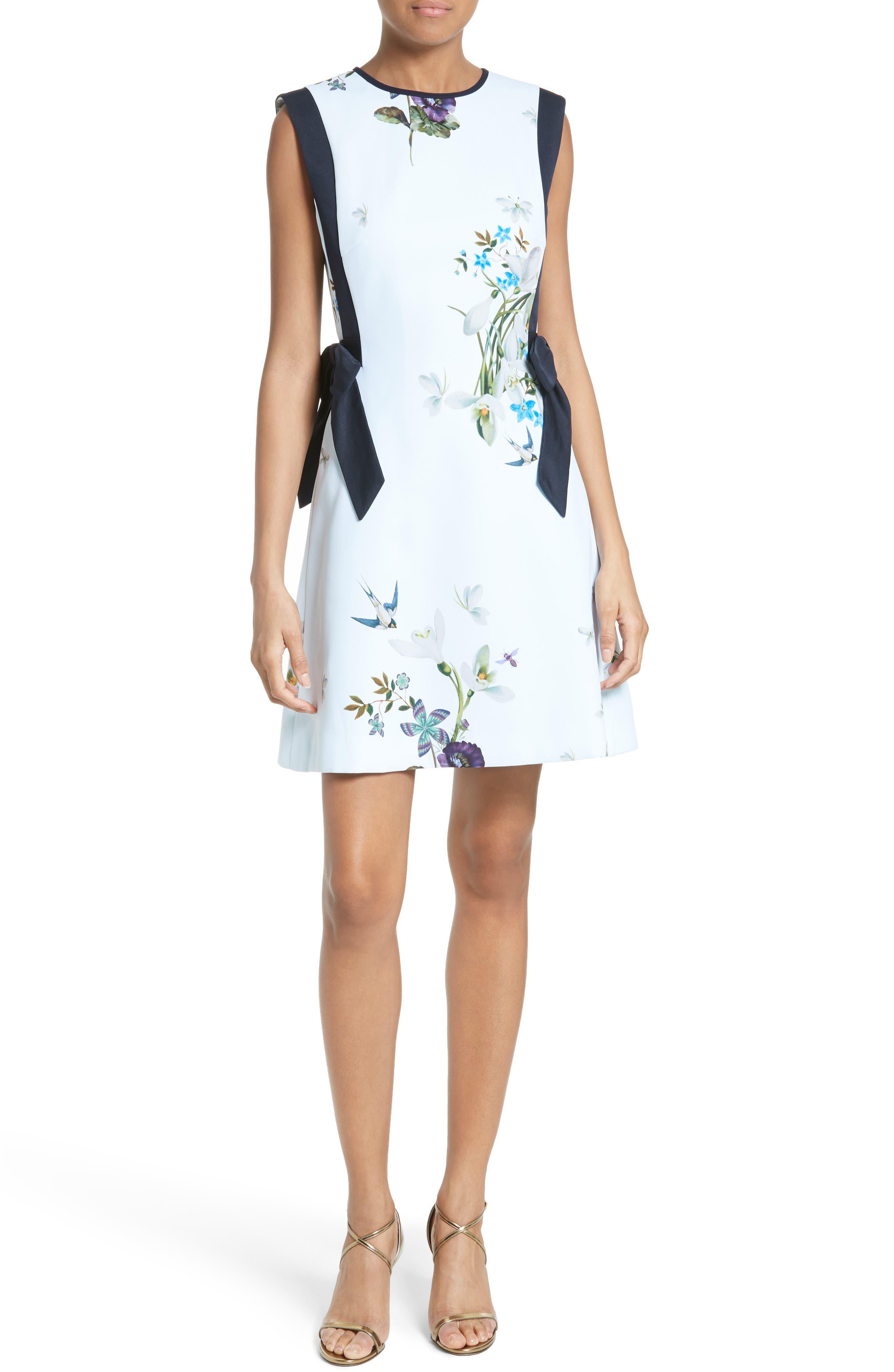 Alternate Image 1 Selected - Ted Baker London Sipnela A-Line Dress