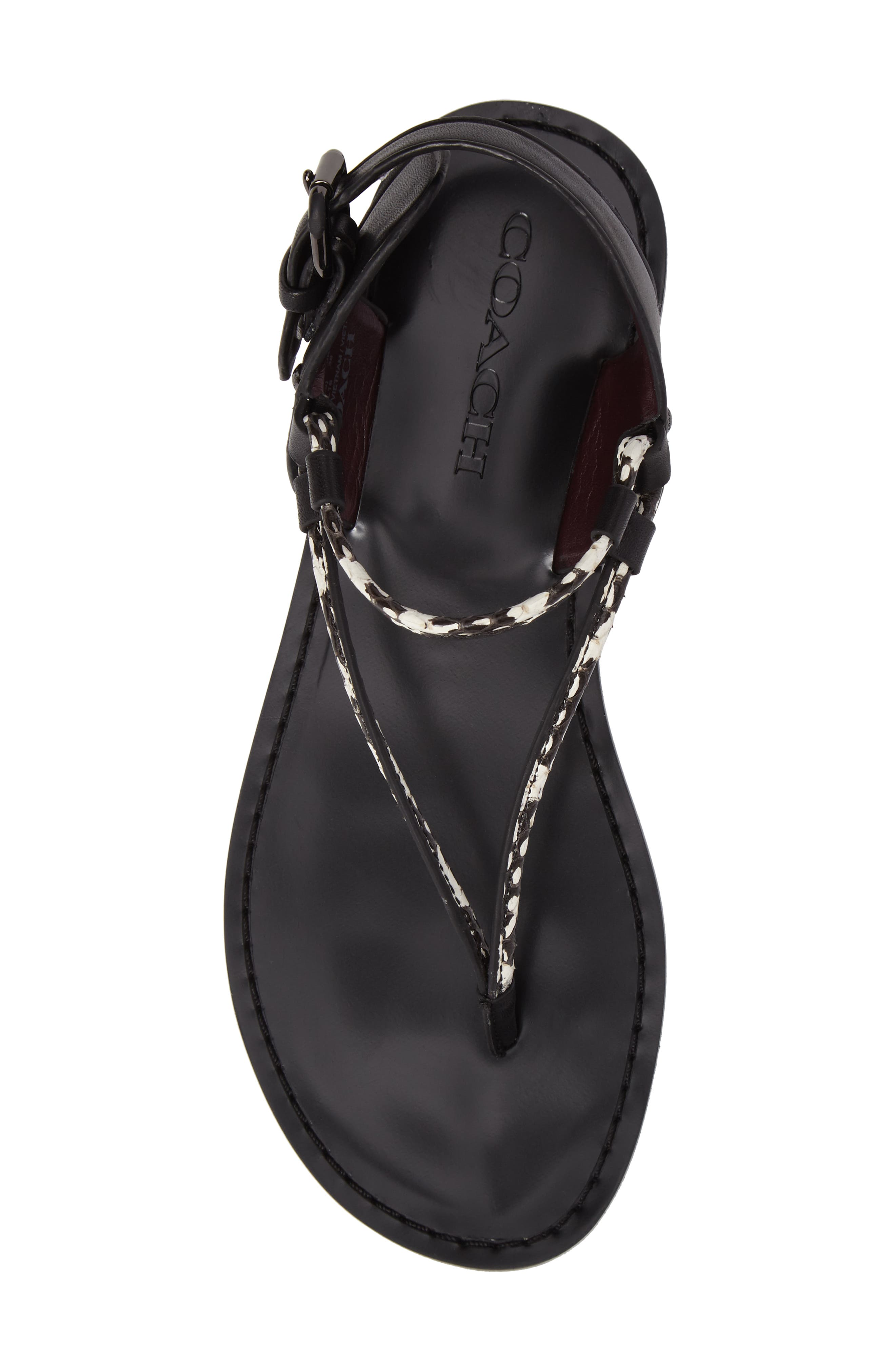 Alternate Image 6  - COACH 'Clarkson' Sandal