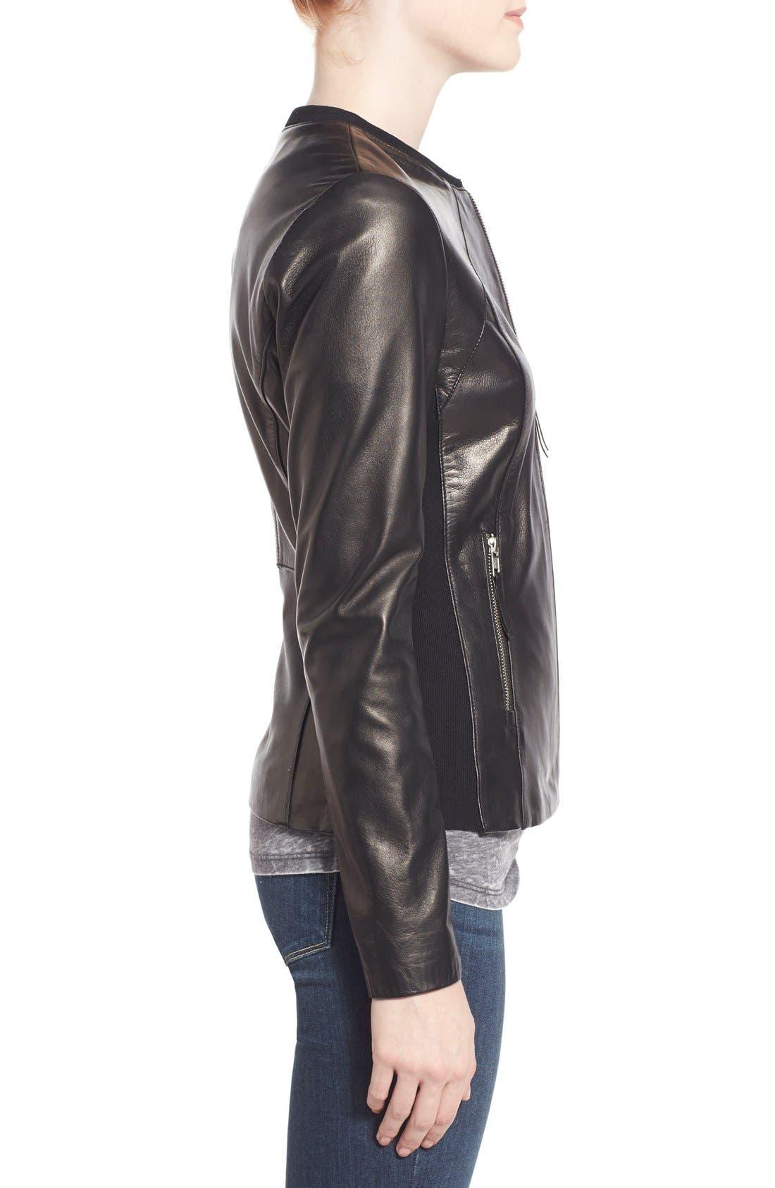 Alternate Image 3  - Soia & Kyo Slim Fit Zip Front Leather Jacket