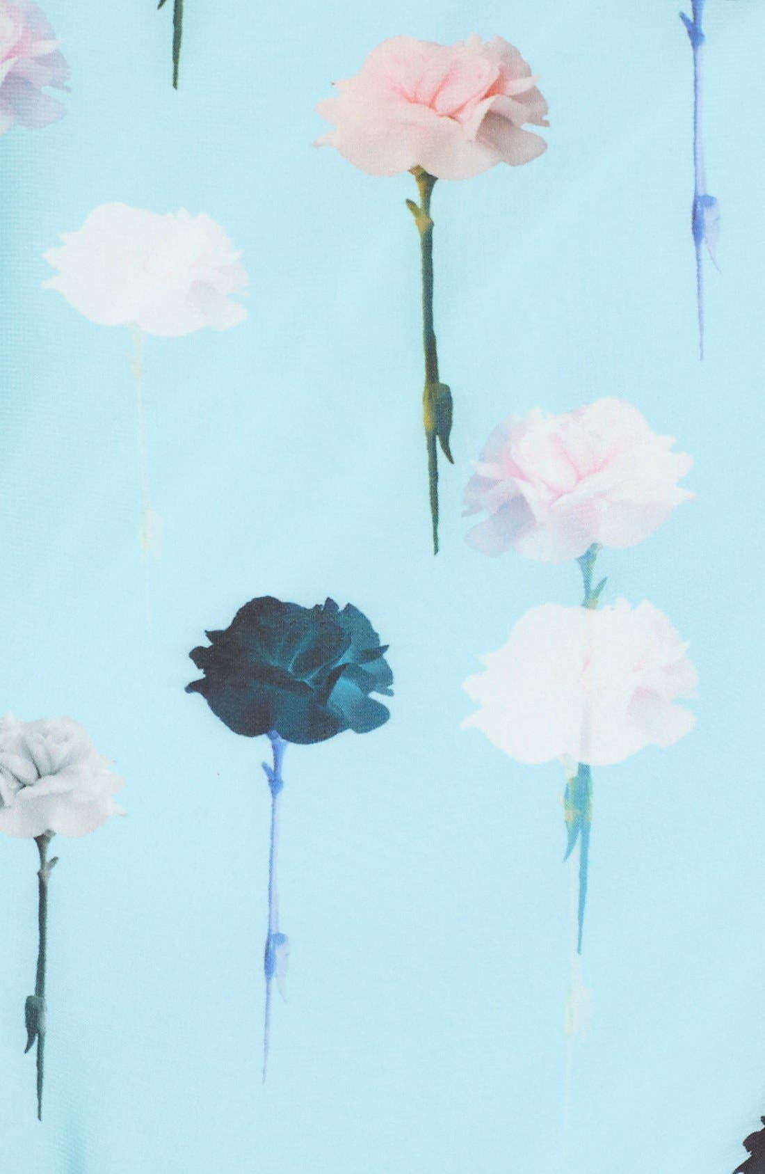 Alternate Image 6  - Adrianna Papell Carnation Print Fit & Flare Dress (Regular & Petite)