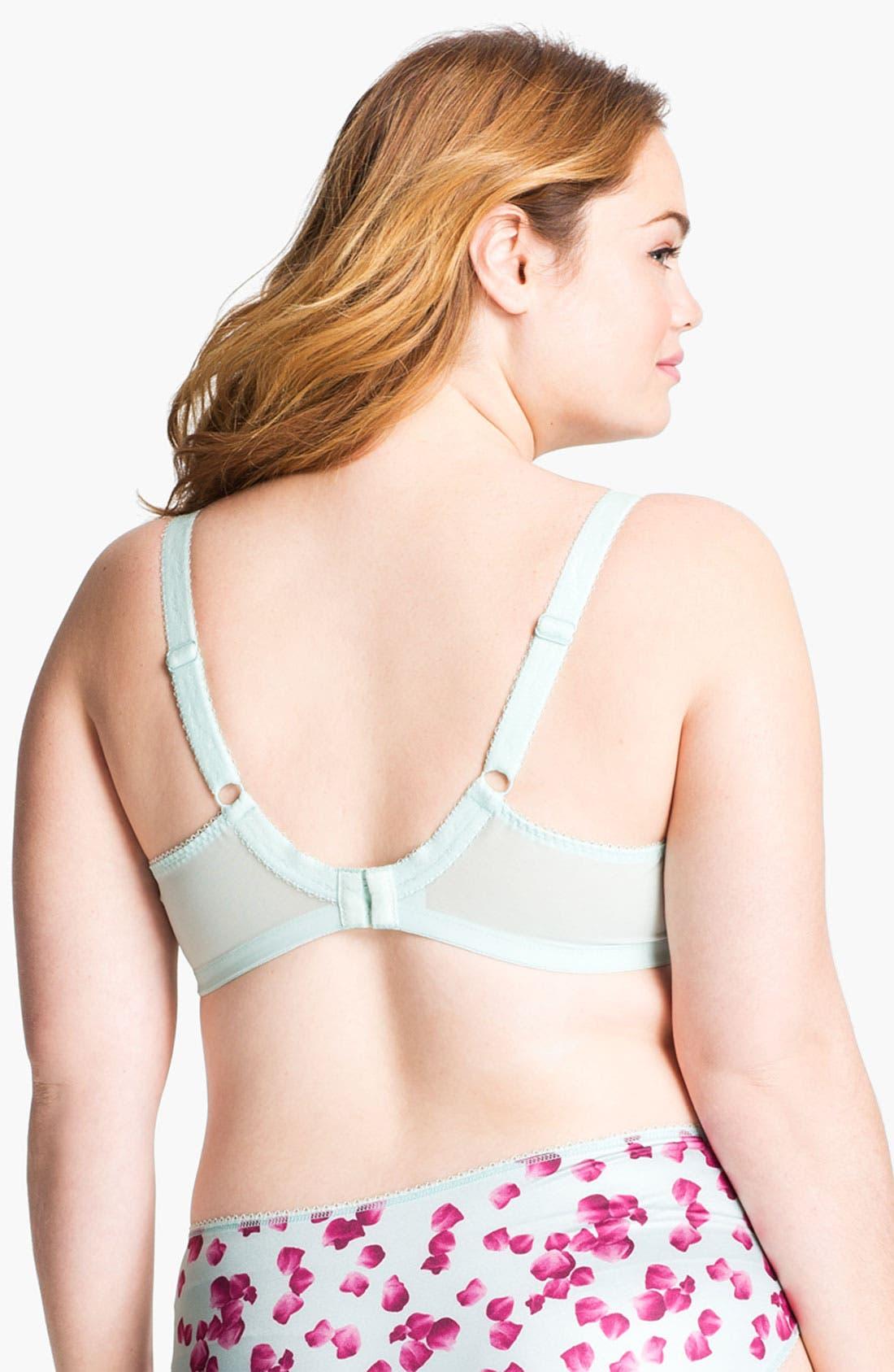 Alternate Image 2  - Elomi 'Valentina' Underwire Plunge Bra (Plus Size)
