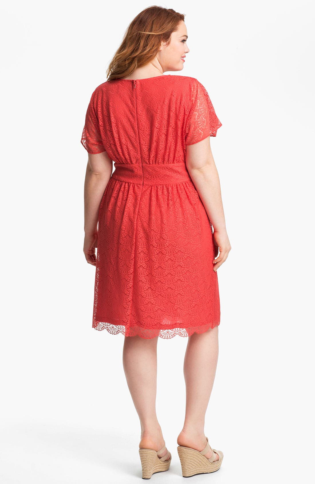 Alternate Image 2  - Adrianna Papell Empire Waist Lace Dress (Plus Size)