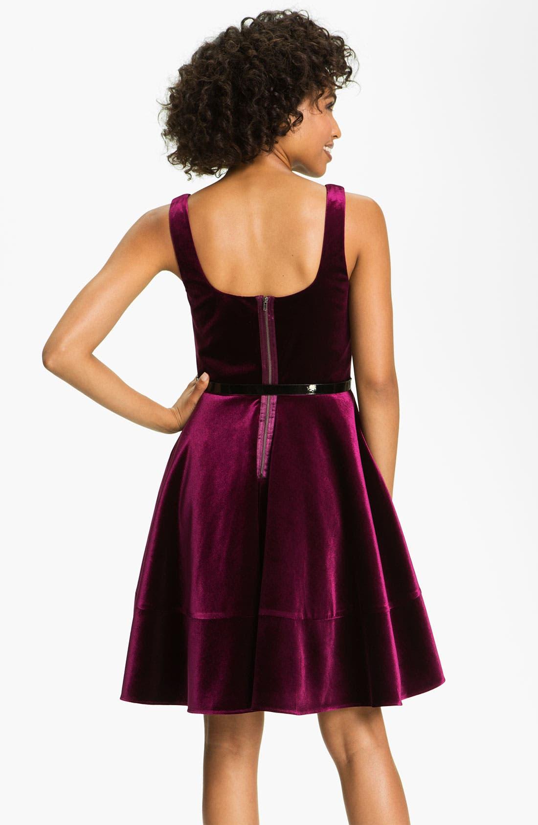 Alternate Image 2  - Adrianna Papell Scoop Neck Velvet Dress (Petite)
