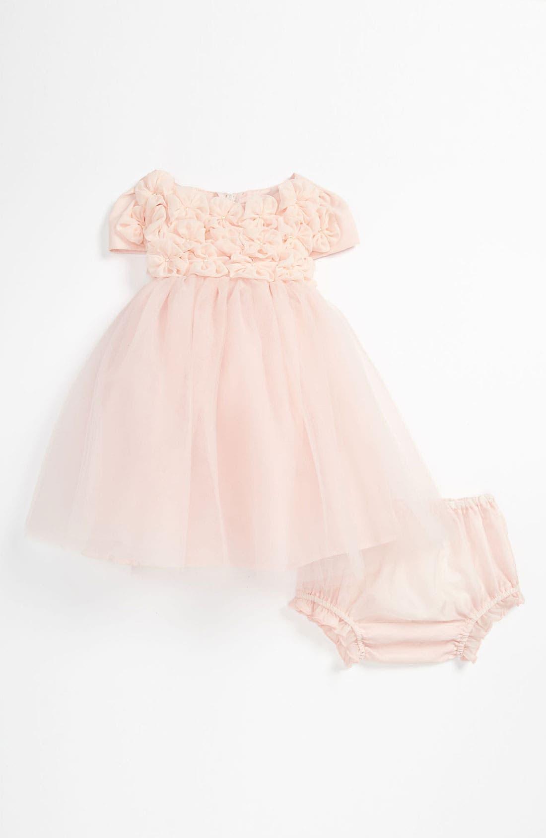Main Image - Biscotti 'Blushing Rose' Dress (Baby Girls)