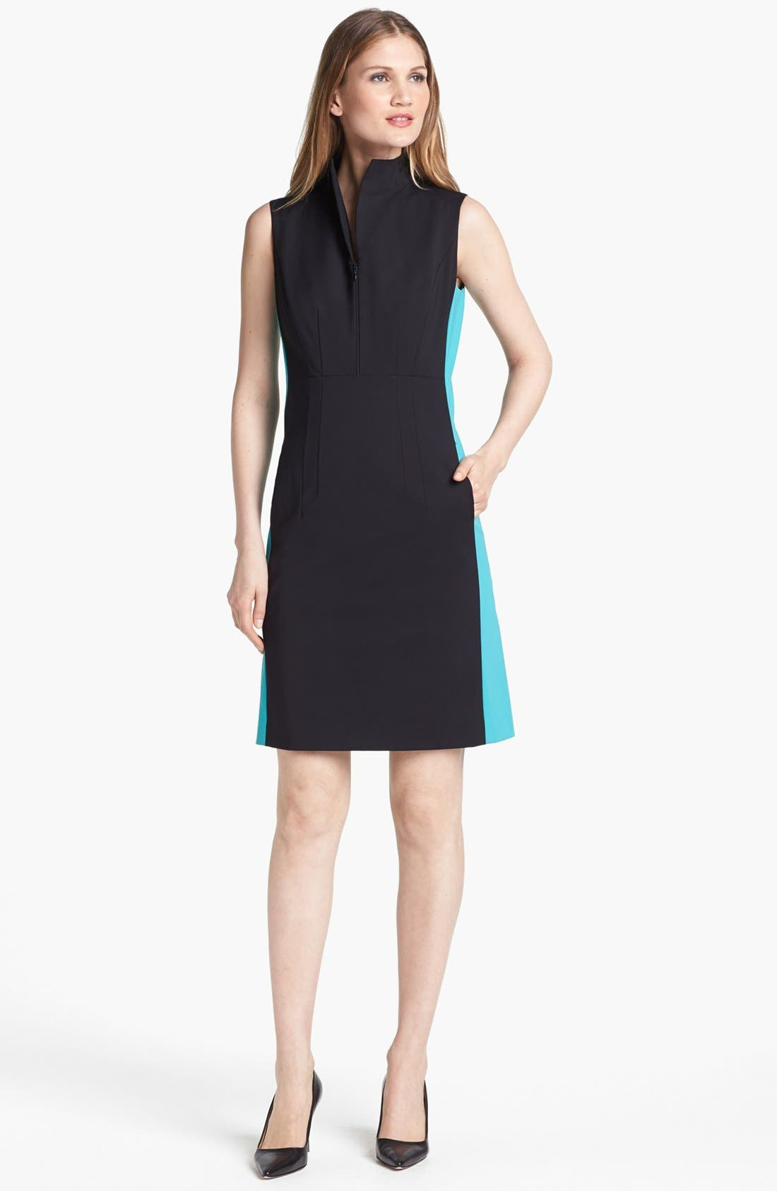Alternate Image 1 Selected - Lafayette 148 New York 'Ashton' Dress