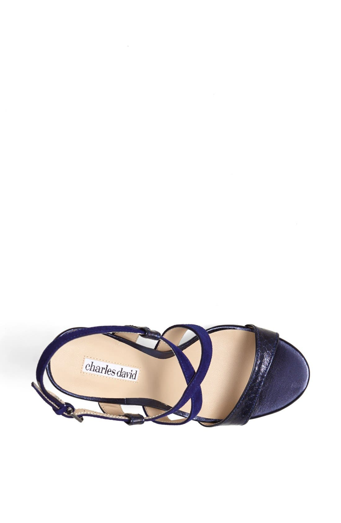 Alternate Image 3  - Charles David 'Hermosa' Platform Sandal