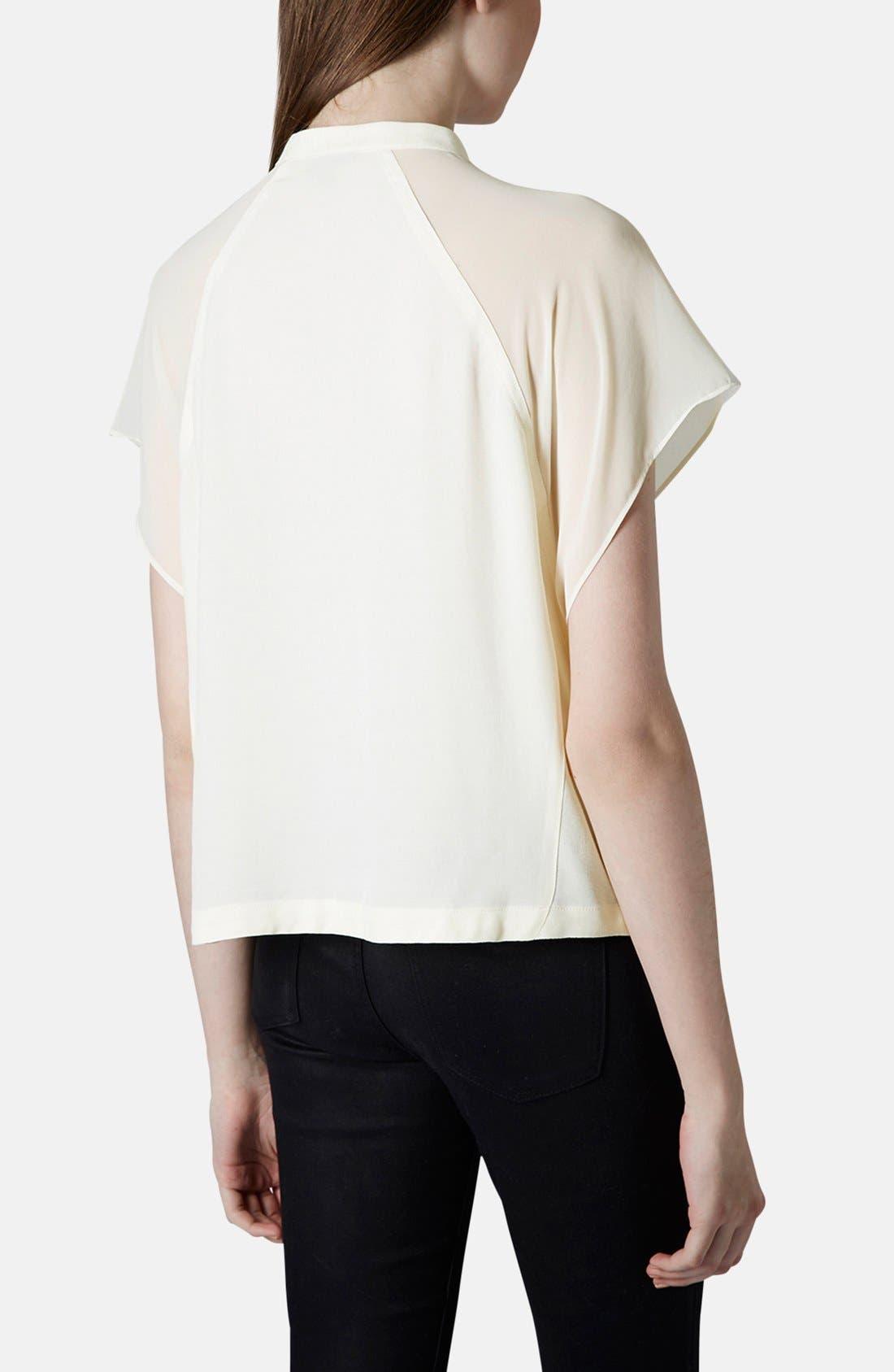 Alternate Image 2  - Topshop Sheer Raglan Sleeve Shirt