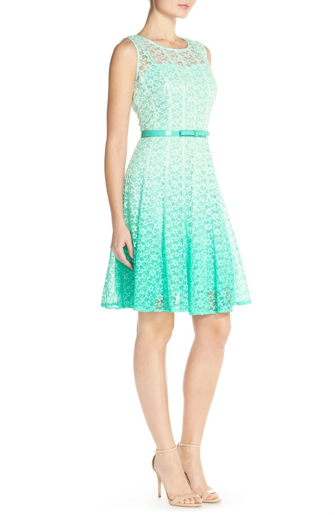 Alternate Image 3  - Chetta B Ombré Lace Sleeveless A-Line Dress with Belt