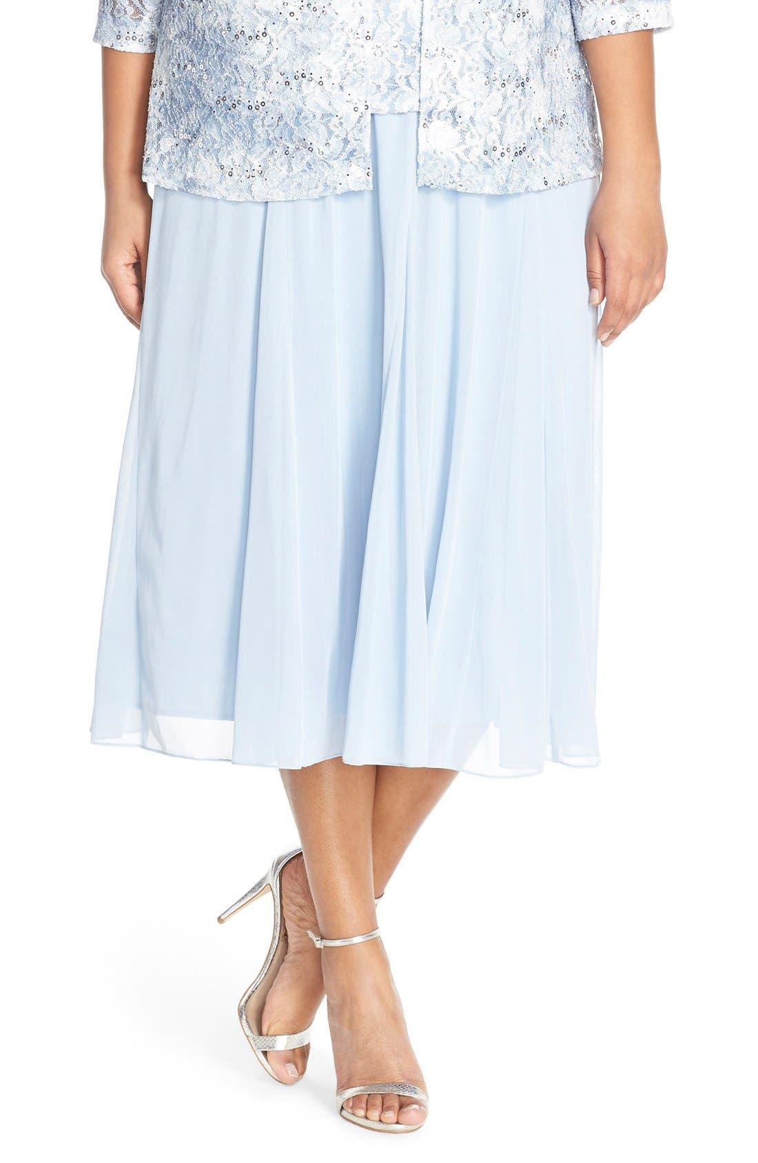 Main Image - Alex Evenings Mesh Skirt (Plus Size)