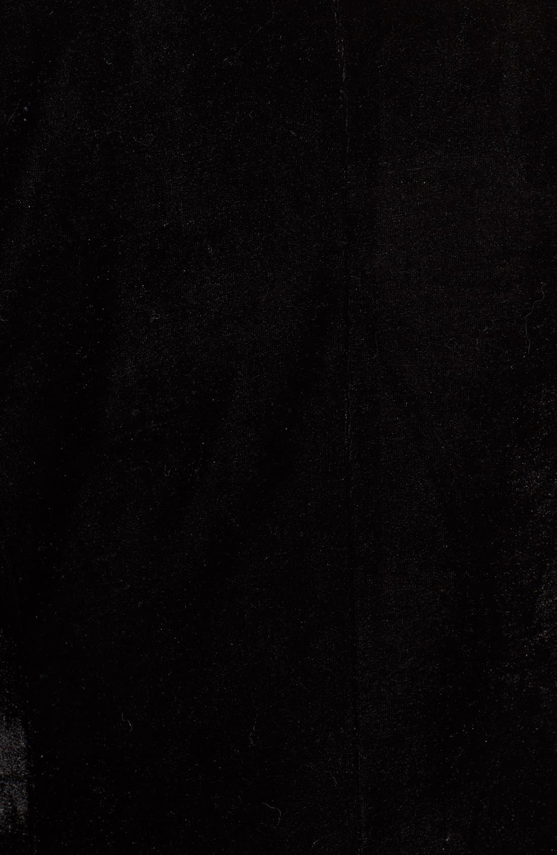 Alternate Image 5  - cupcakes and cashmere 'Toby' Velvet Blazer