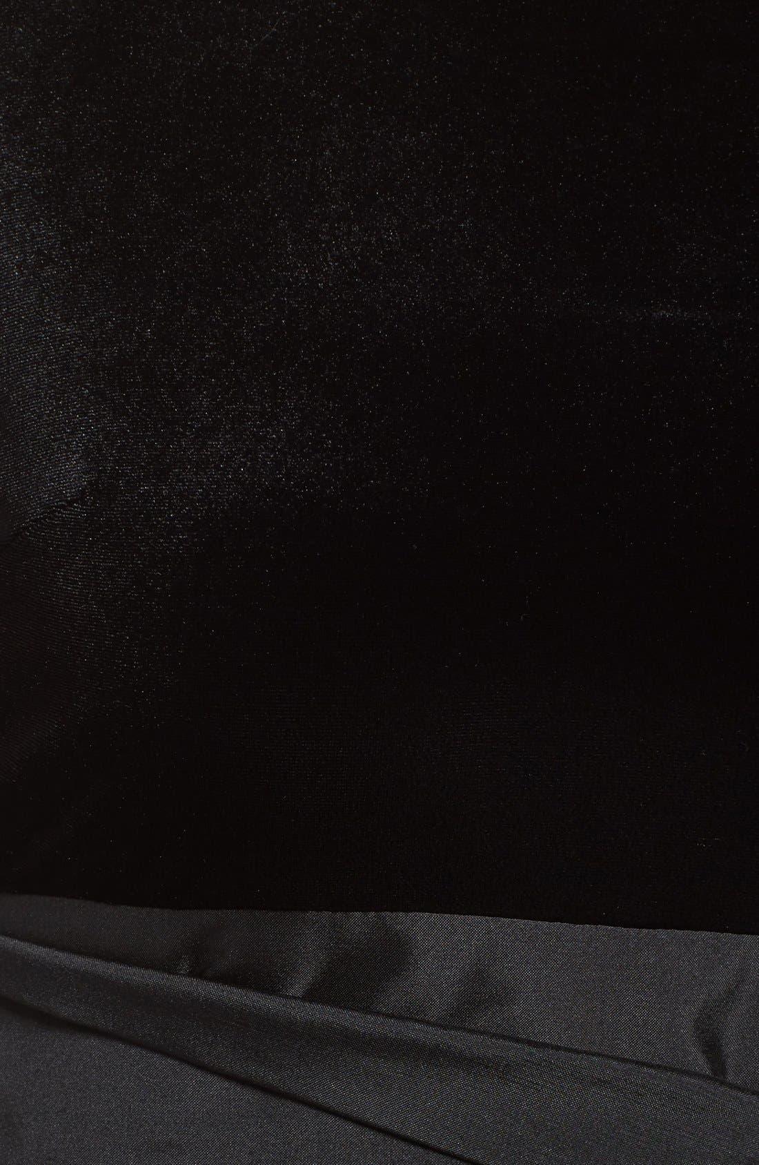 Alternate Image 6  - Adrianna Papell Velvet & Taffeta Fit & Flare Dress