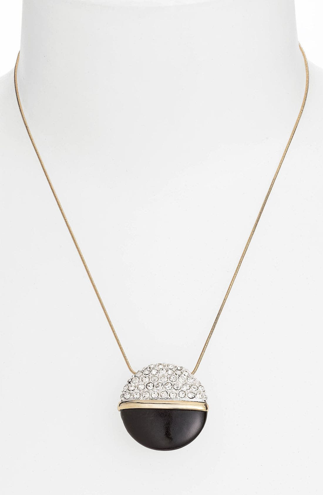 Alternate Image 1 Selected - Anne Klein Pendant Necklace