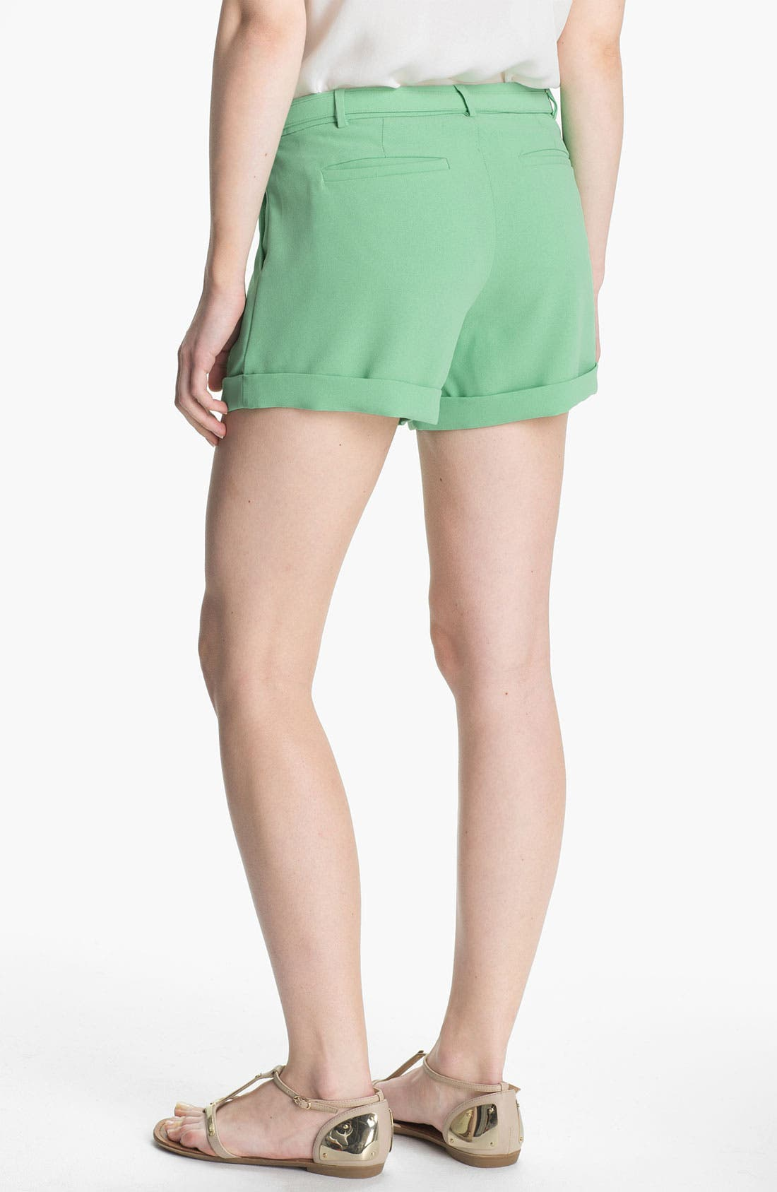 Alternate Image 2  - Joie 'Concetta' Belted Cuff Shorts