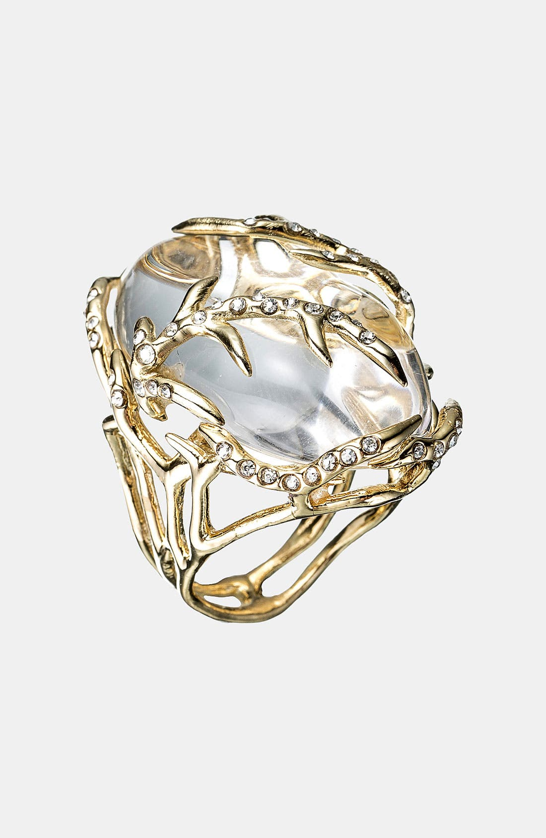 Alternate Image 1 Selected - Alexis Bittar 'Lucite® - Ophelia' Vine Encased Ring