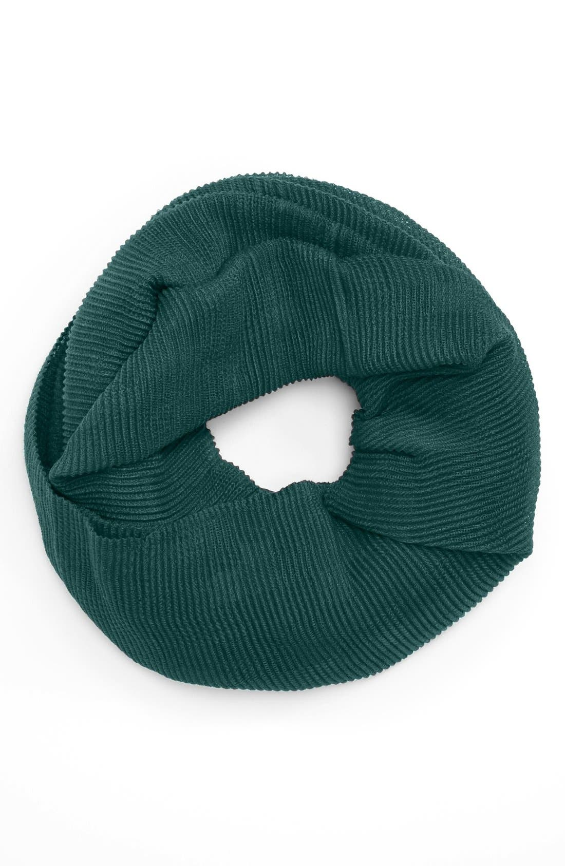 Alternate Image 1 Selected - Echo Pleated Infinity Scarf