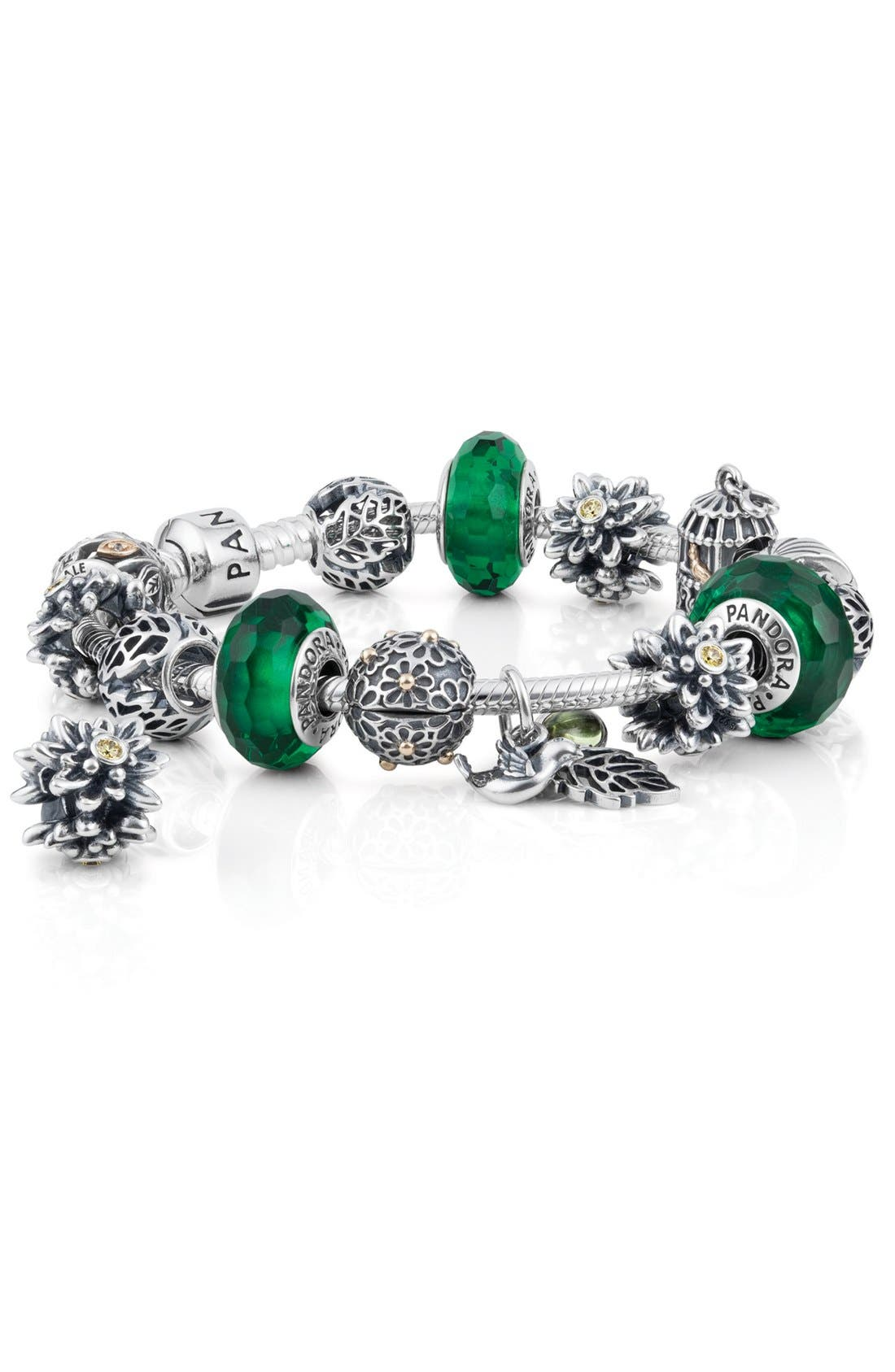 Alternate Image 1 Selected - PANDORA Charm Bracelet & Charms