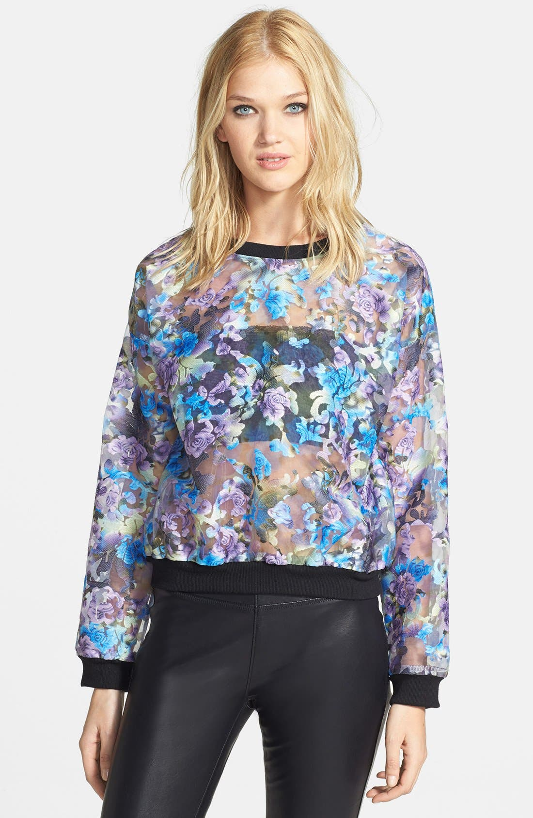 Alternate Image 1 Selected - Tildon Embroidered Organza Pullover