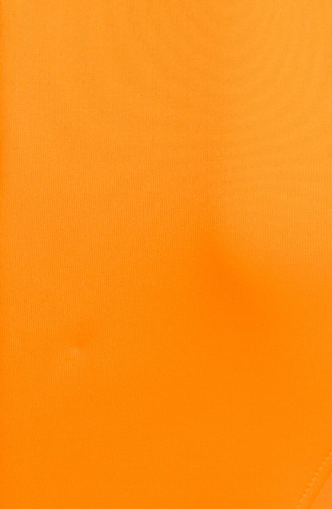 Alternate Image 3  - Ted Baker London 'Preeny' Belted Jersey Skater Dress