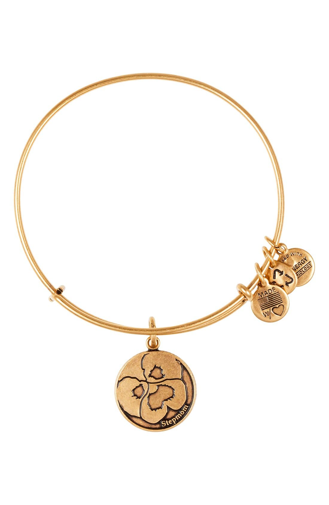 Alternate Image 1 Selected - Alex and Ani 'Stepmom' Expandable Wire Bangle