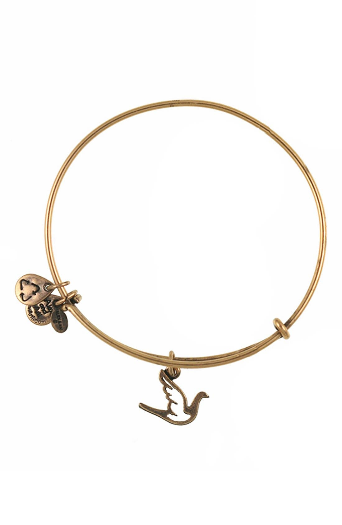 Alternate Image 1 Selected - Alex and Ani 'Sacred Dove' Expandable Wire Bangle