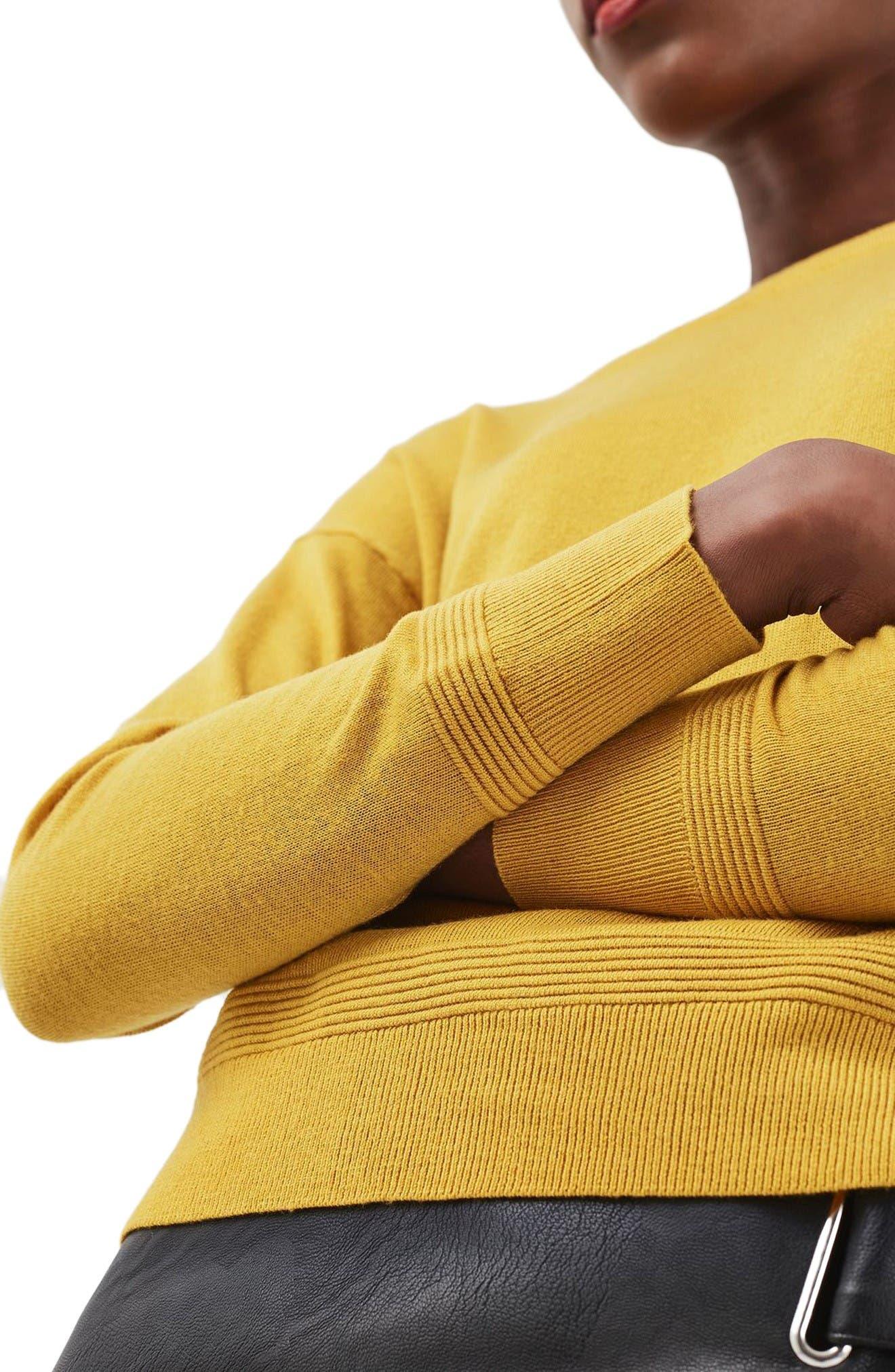 Alternate Image 5  - Topshop Ottoman Rib Border Sweater