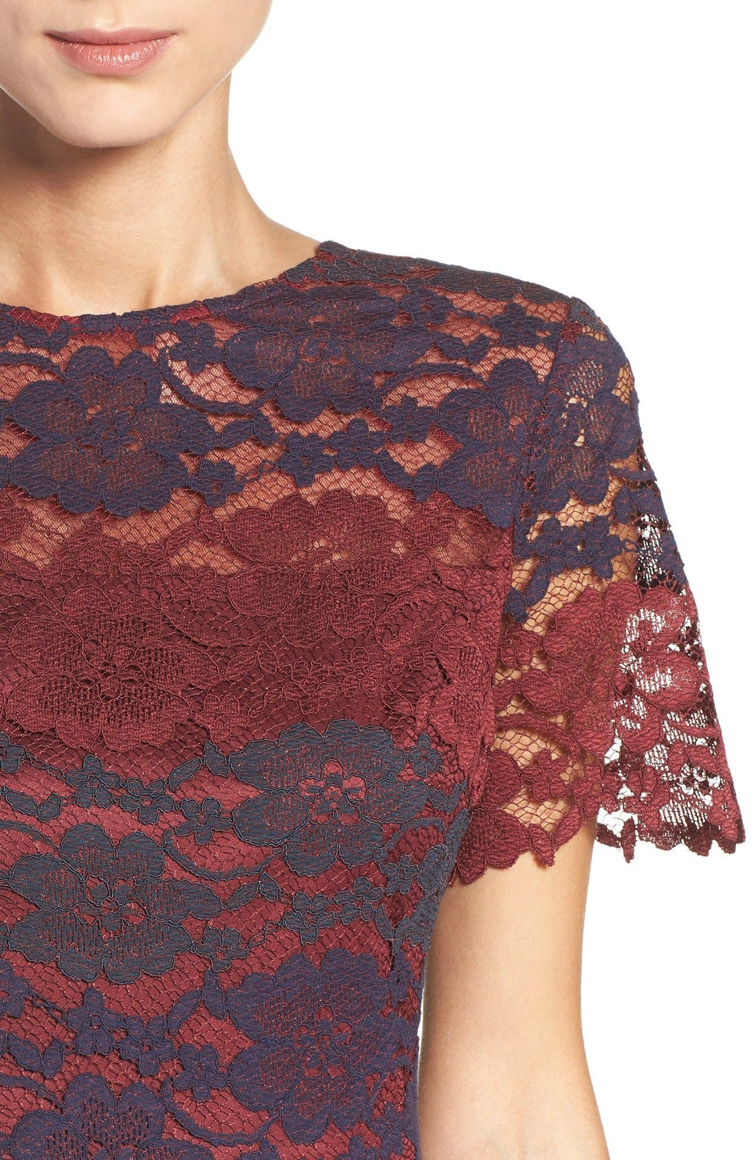 Alternate Image 5  - Maggy London Lace Fit & Flare Dress