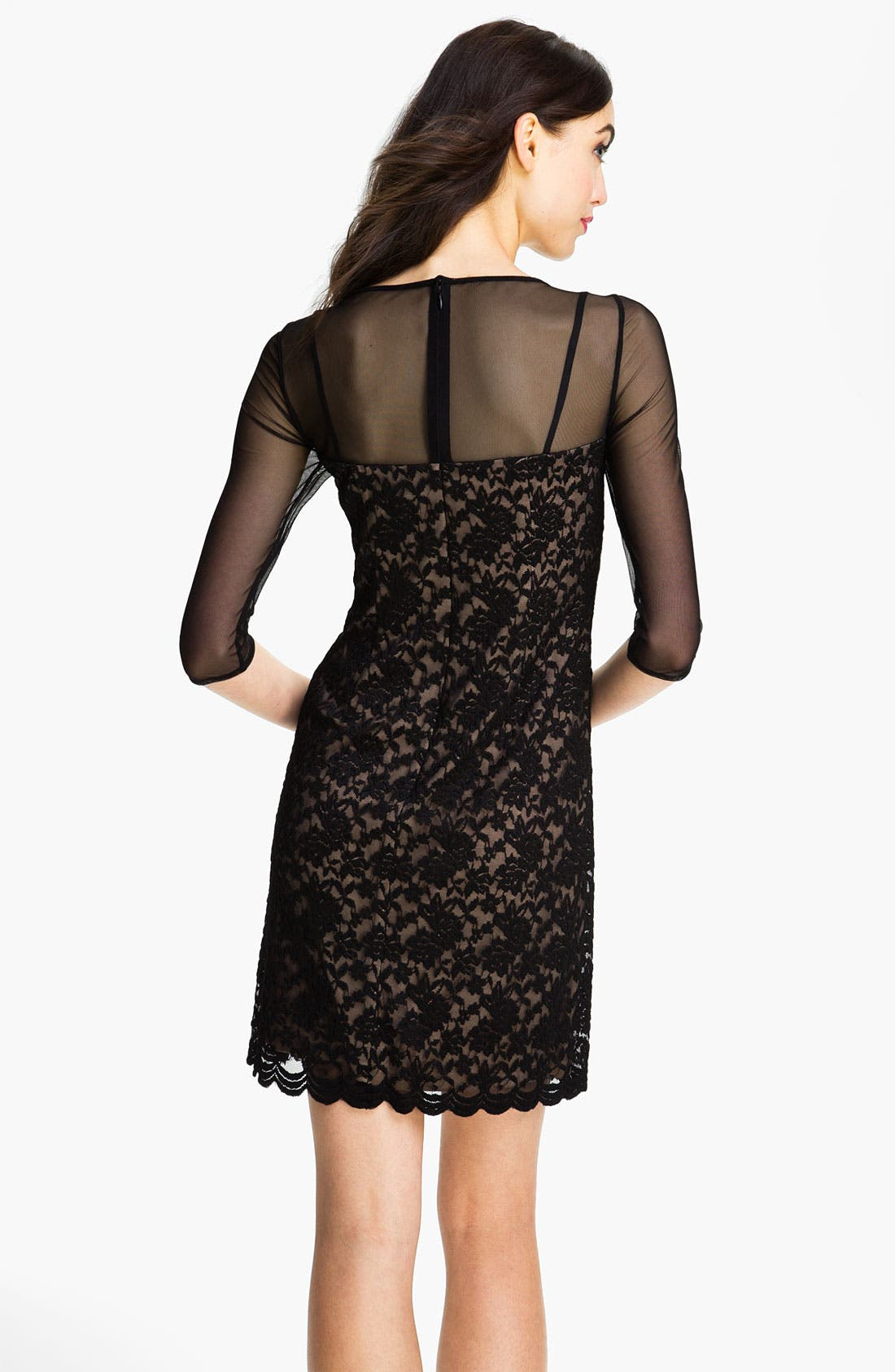 Alternate Image 2  - Adrianna Papell Illusion Yoke Lace & Mesh Dress