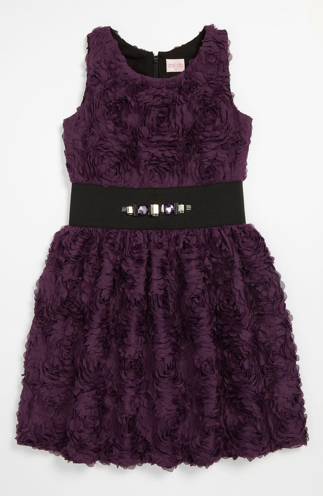 Main Image - Zoe Ltd 'Roses' Dress (Big Girls)