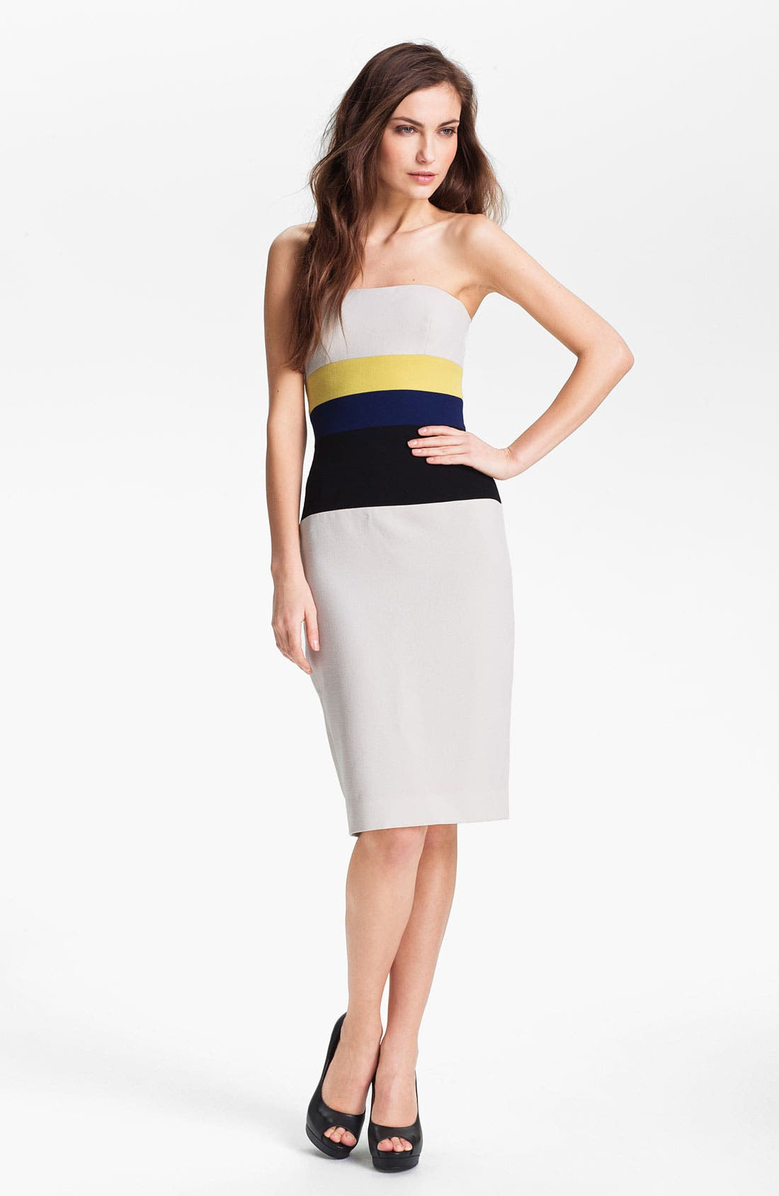 Alternate Image 1 Selected - BCBGMAXAZRIA Colorblocked Sheath Dress