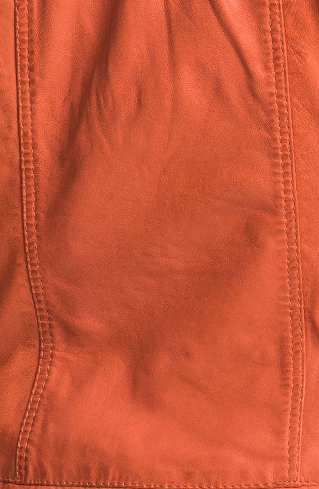 Alternate Image 3  - Bernardo Leather Scuba Jacket (Plus) (Nordstrom Exclusive)